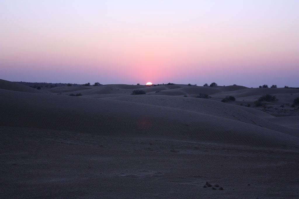 Rajasthan Rover
