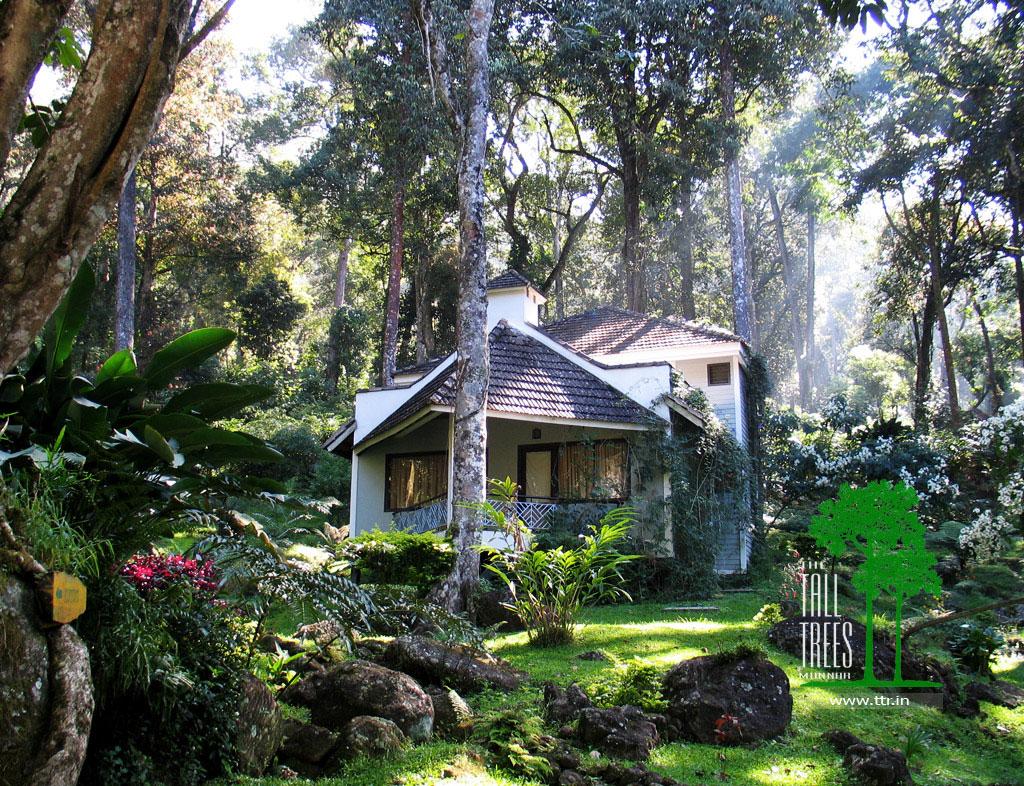 Tall Trees Resort, Munnar
