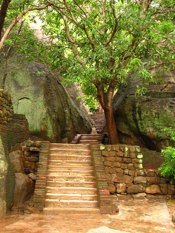 Stone stairs at Sigiriya Photo credit:  McKay Savage