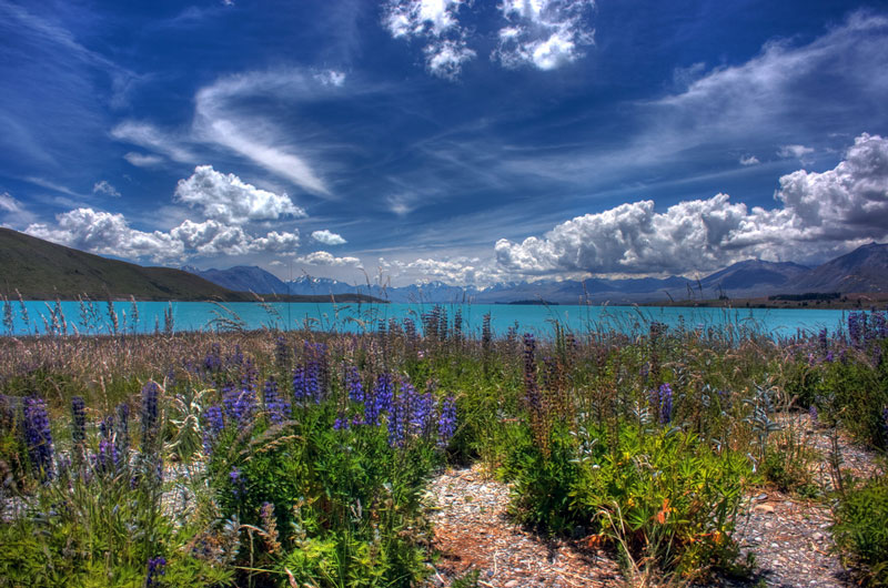 Lake Tekapo Photo credit:  Anthony Cramp