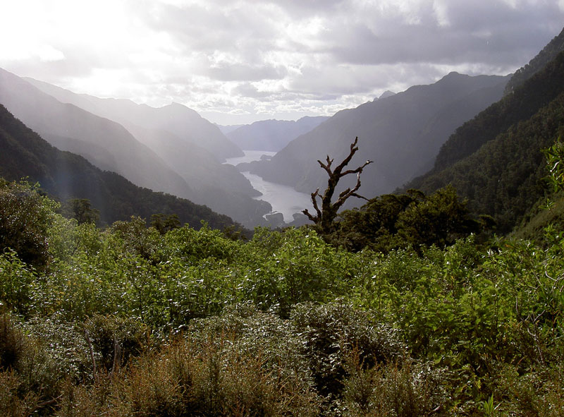 Doubtful Sound Photo credit:  Kiwi-Wings