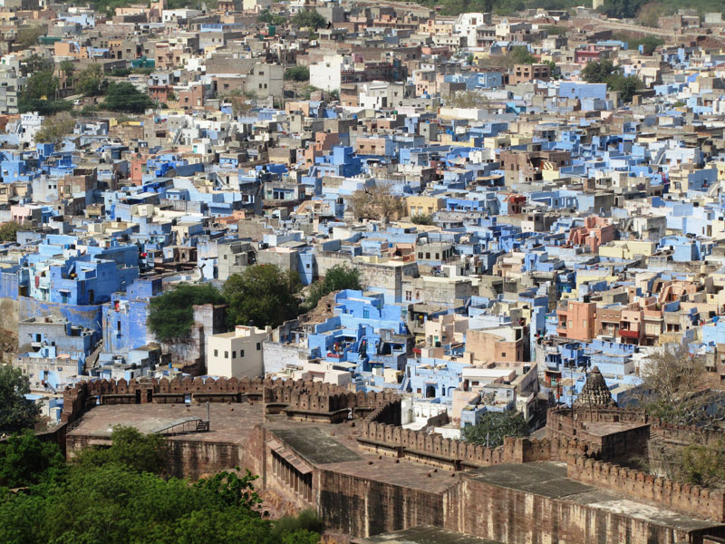 View of the old town from the fort, Jodhpur Photo credit: Rustom Katrak
