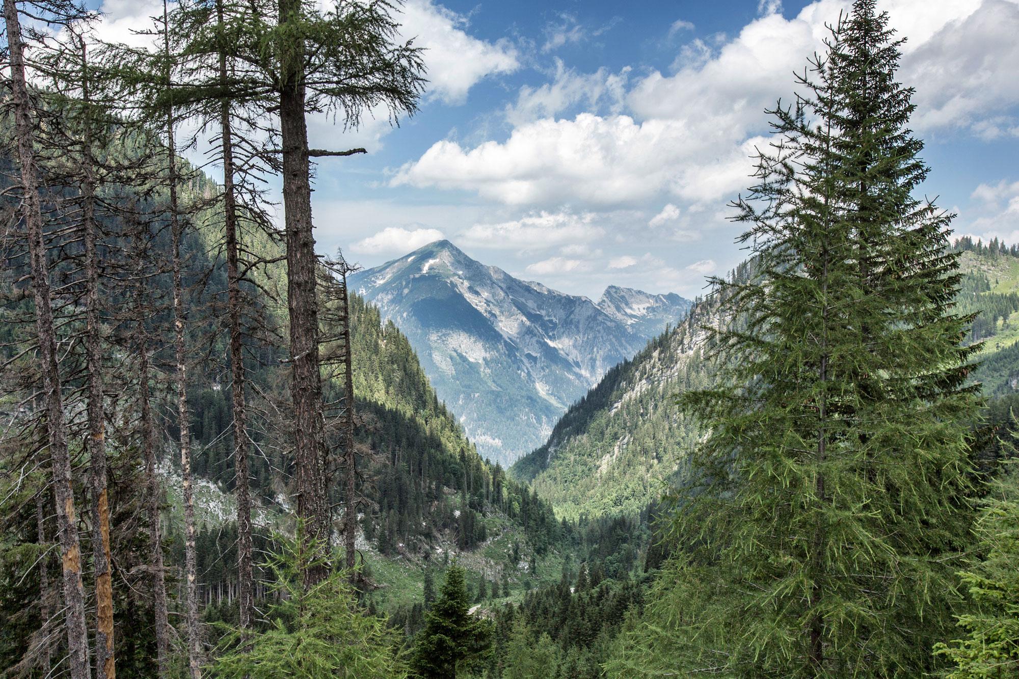 Steirmark-Austria,-Trekking.2.jpg