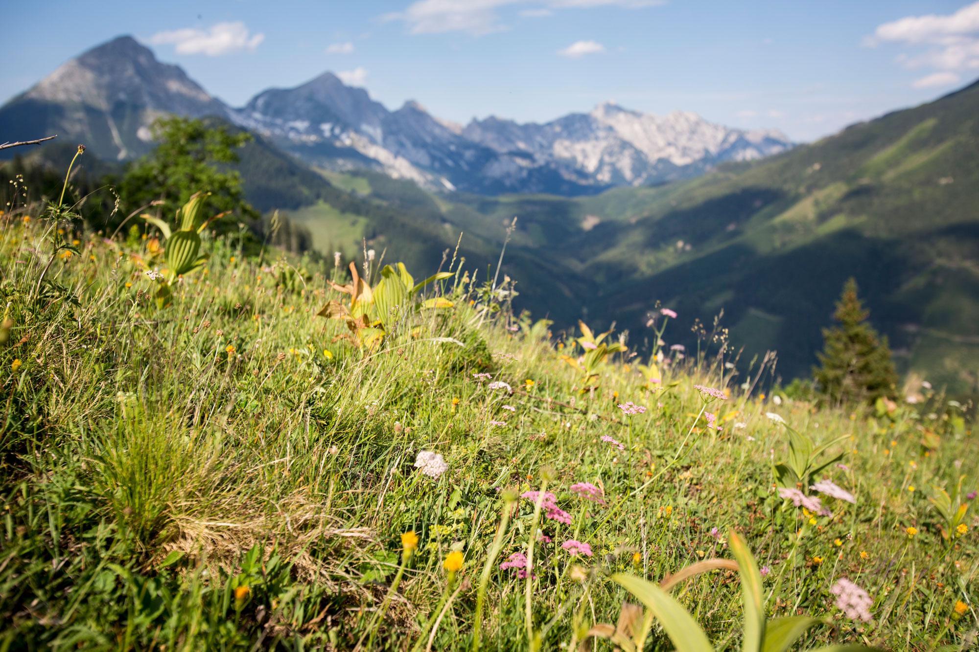 Steirmark-Austria,-Trekking.14.jpg