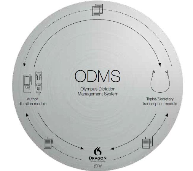 ODMS_workflow_process2.jpg