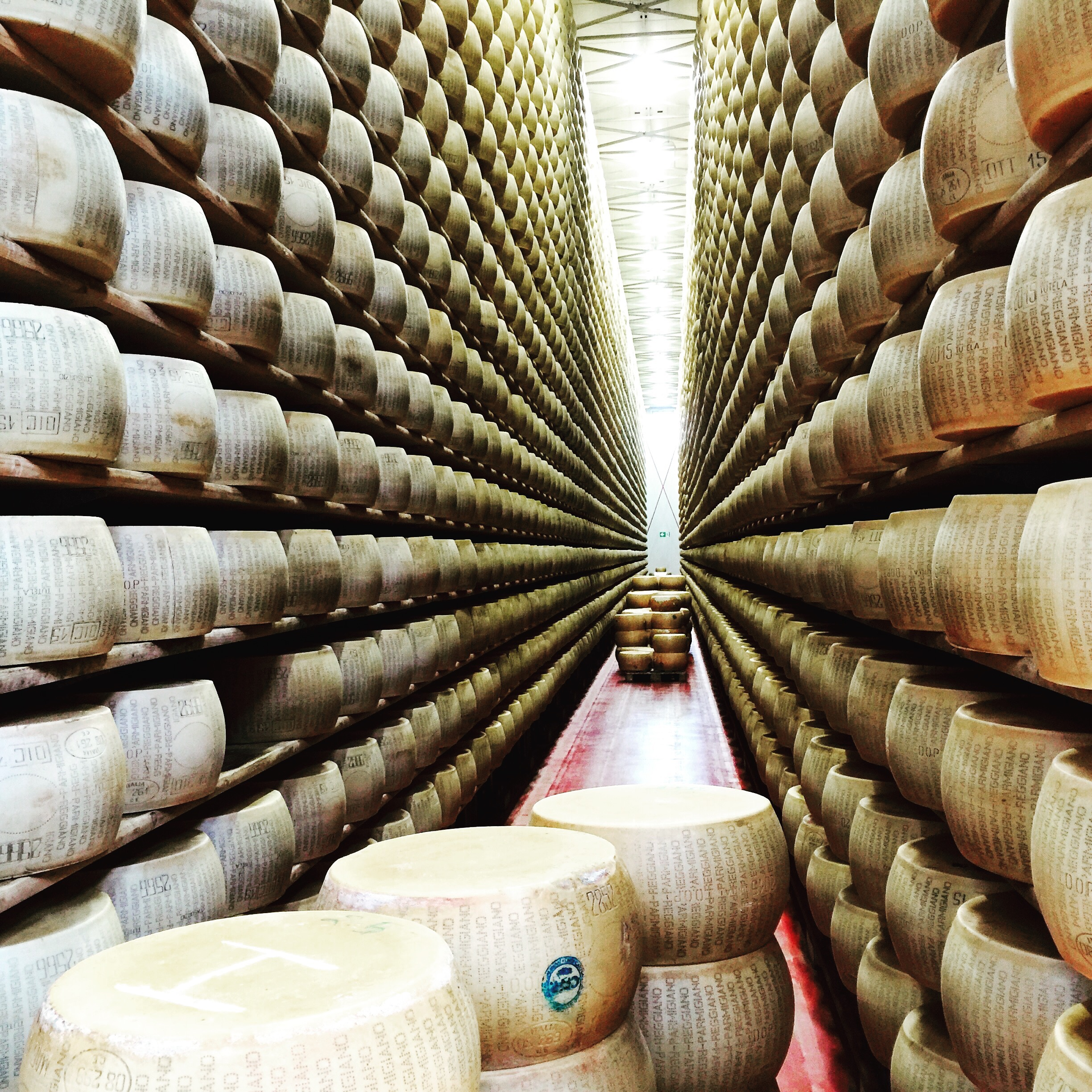 Thousands of wheels of cheese, oh my! A cheese tasting at t he     4 Madonne dell ' Emilia  Dairy.