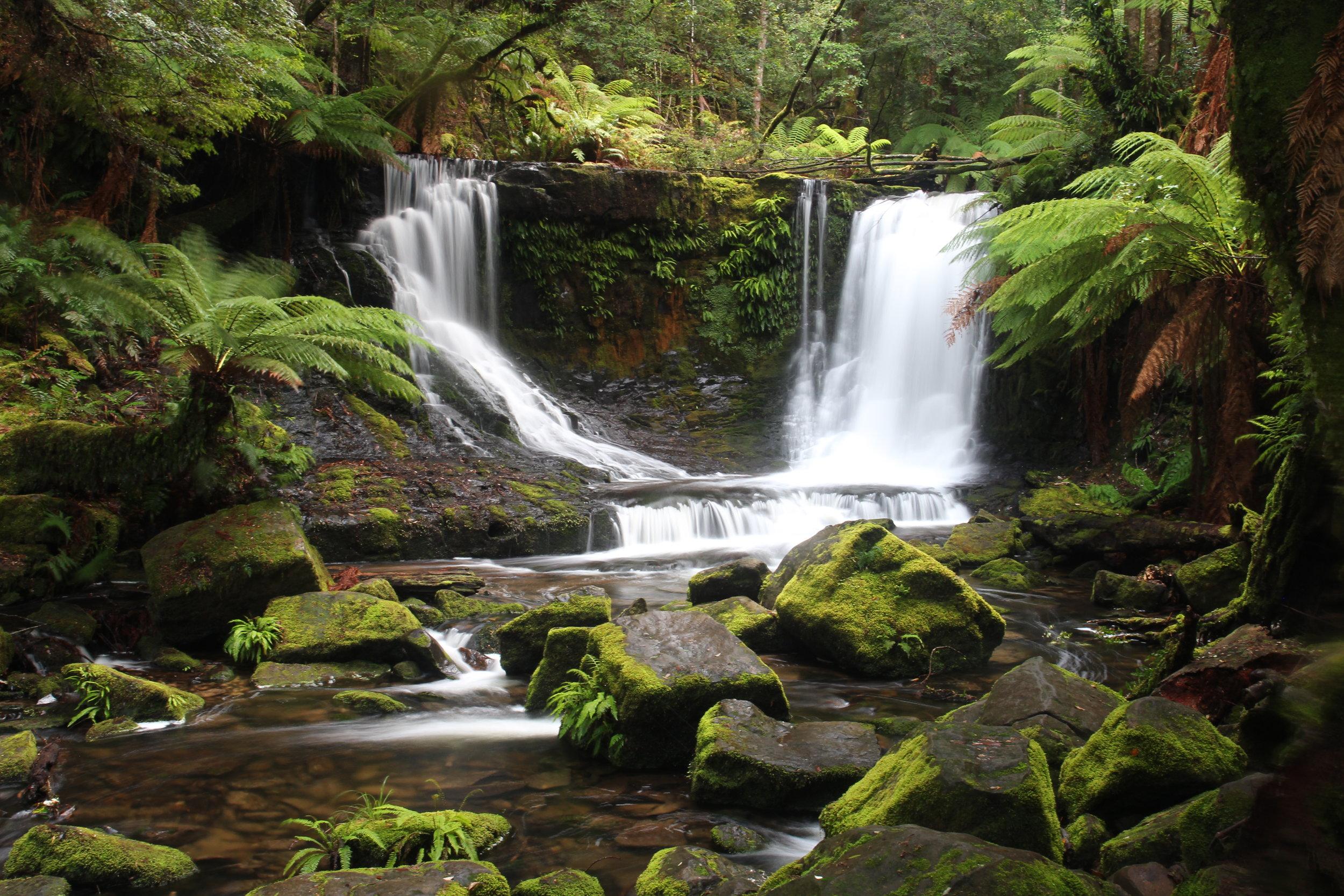 Horseshoe Falls, Mt Fields, Tasmania by Paul Heald