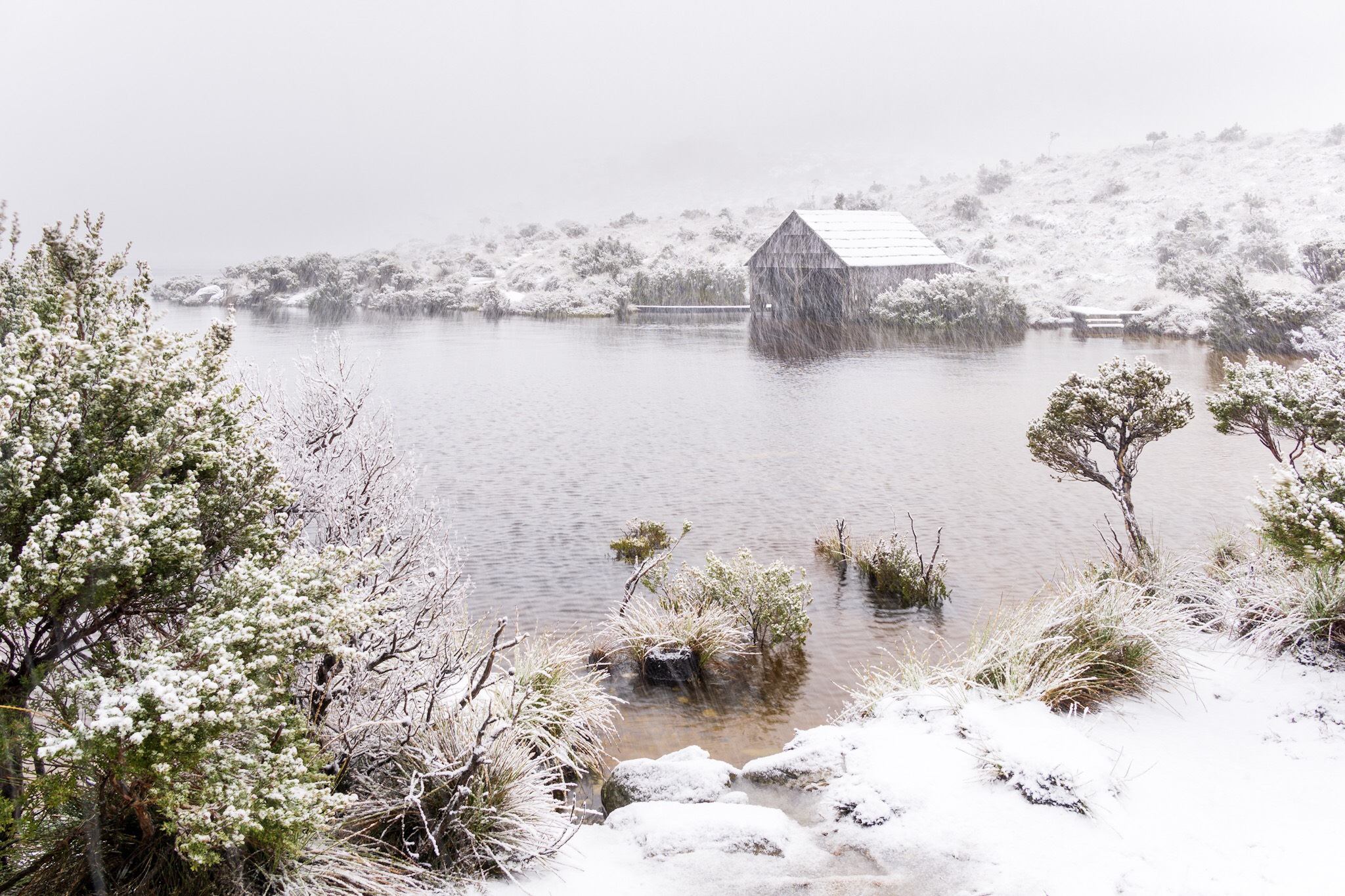 Boat Shed, Cradle Mountain, Tasmania by John Baba