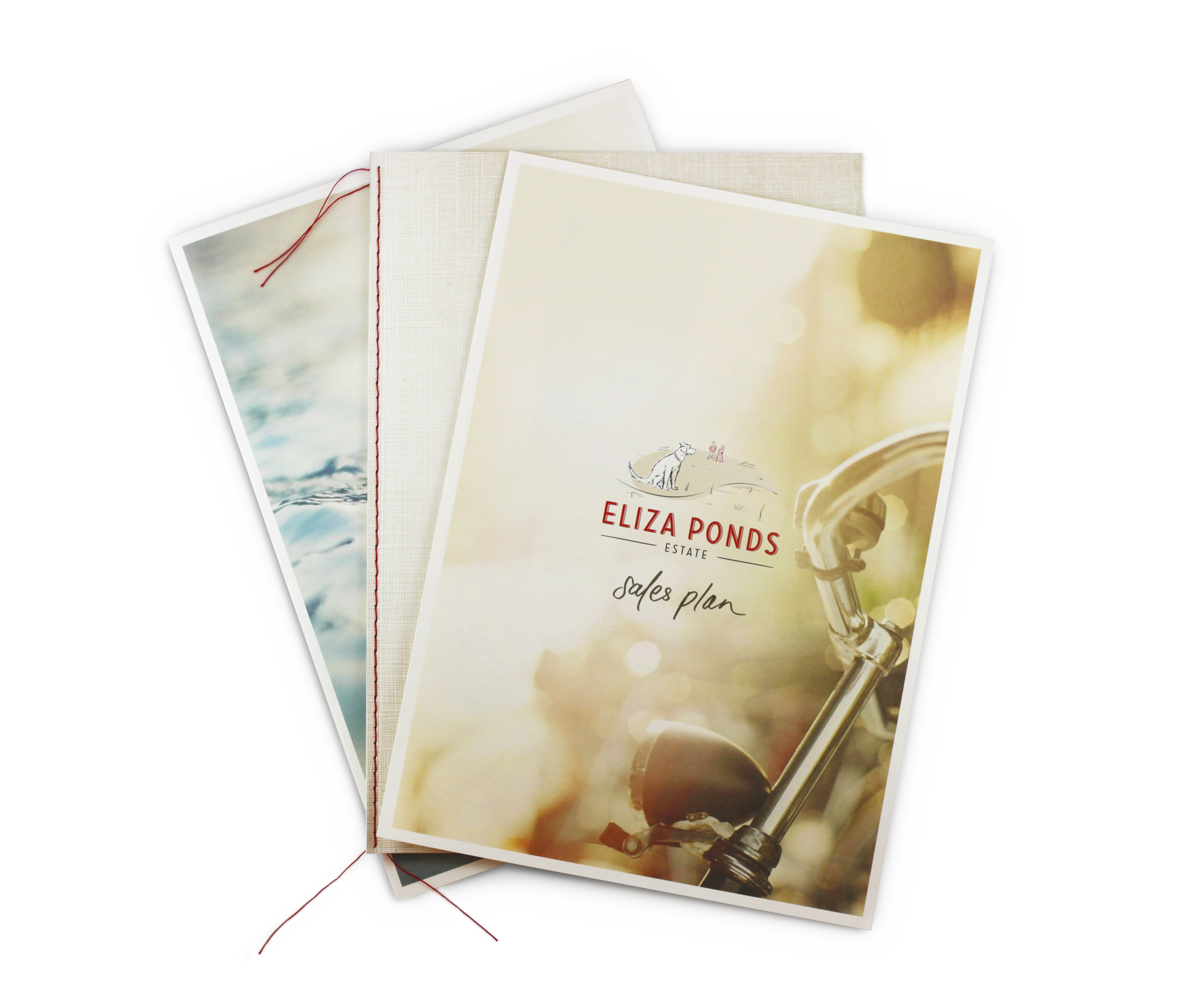 Eliza Ponds Collateral 07.jpg
