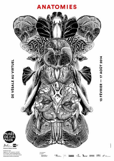 affiche-anatomies.jpg