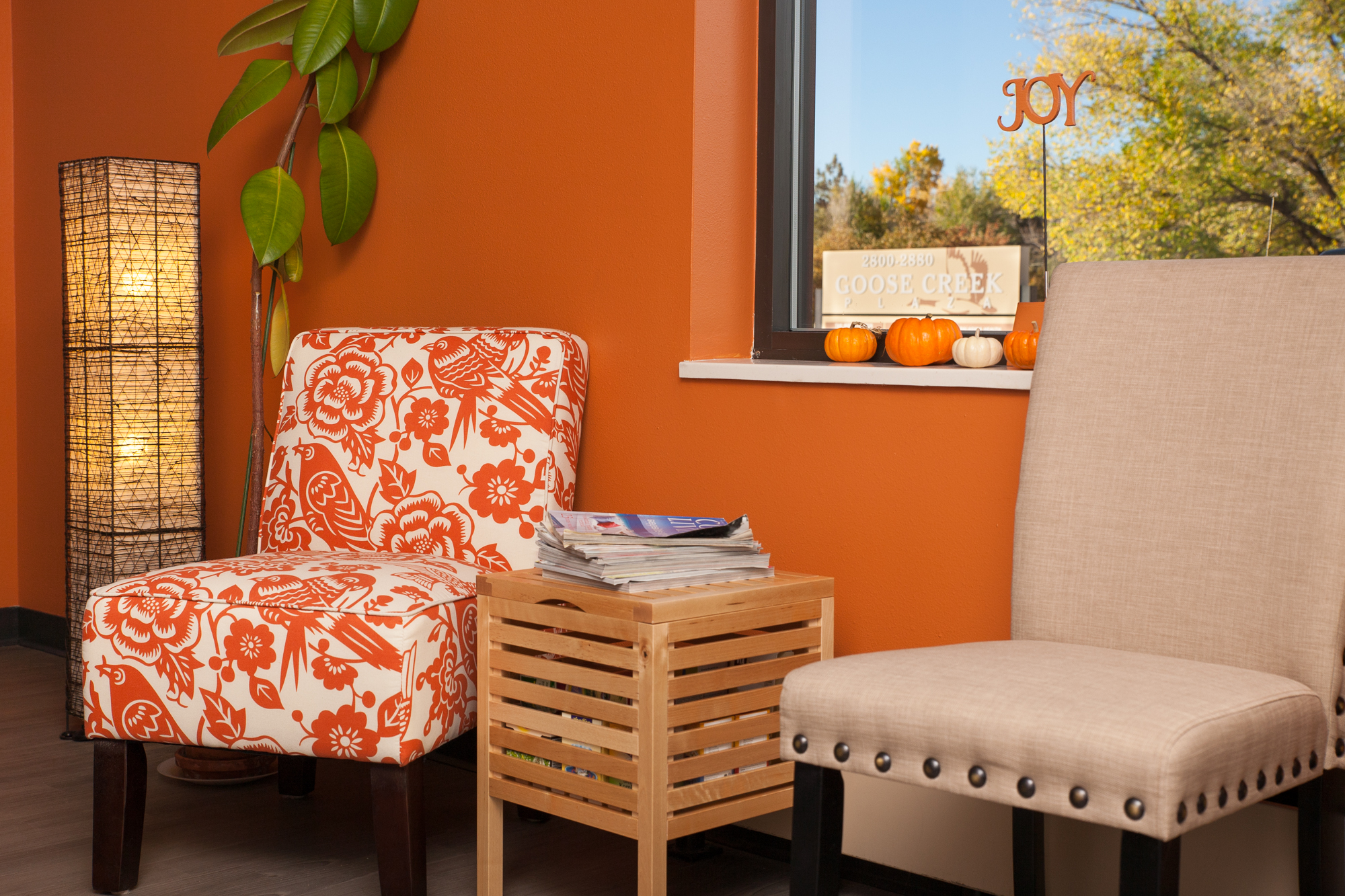 Waiting room at JOY Collective office. Enjoy a walk on the nearby Goose Creek Path before or after sessions!
