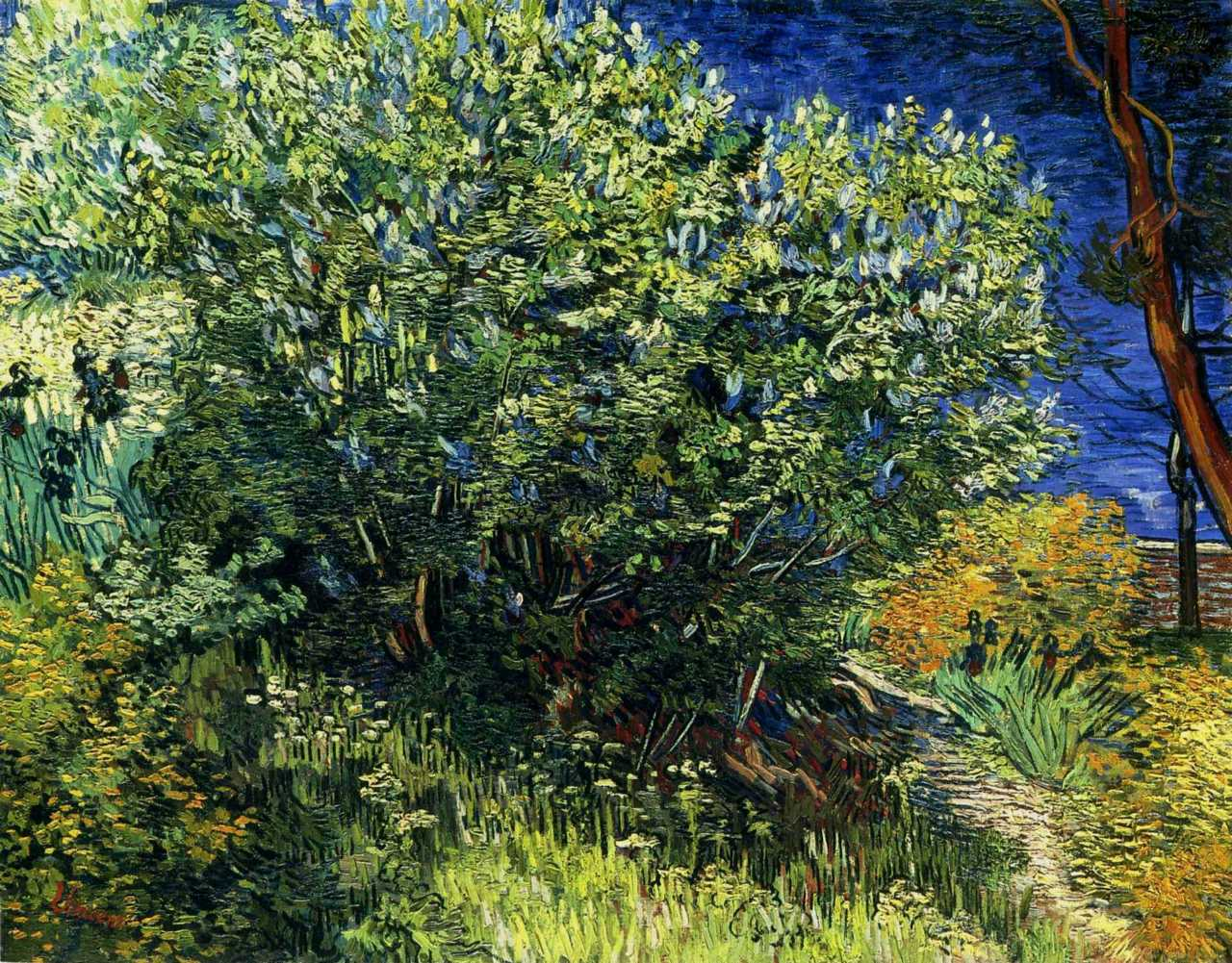 Van Gogh, Lilac Bush Oil, 1889