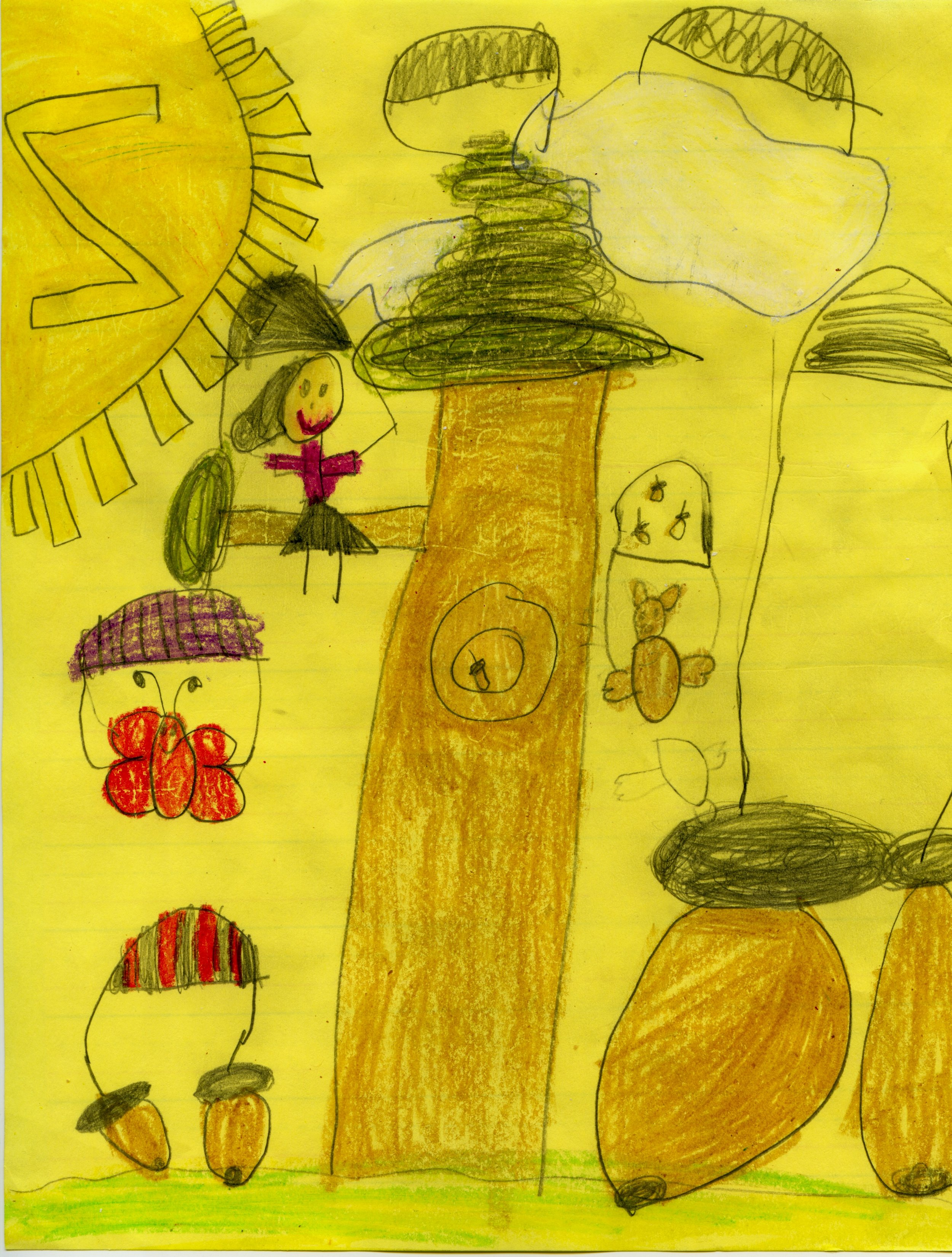 "Ella, Grade K1, Michigan:""…could you write a book about tree climbing? I love to climb trees…"""