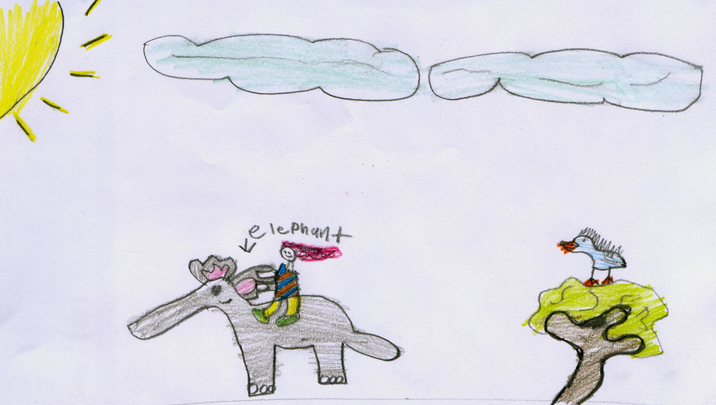 "Mohamed,Grade3/4, Calgary: ""…please write a story about Stella in Africa…"""