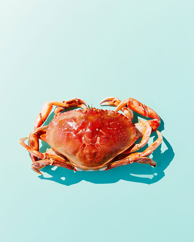 This is a companion shot for the Crab Cake Burgers recipe.