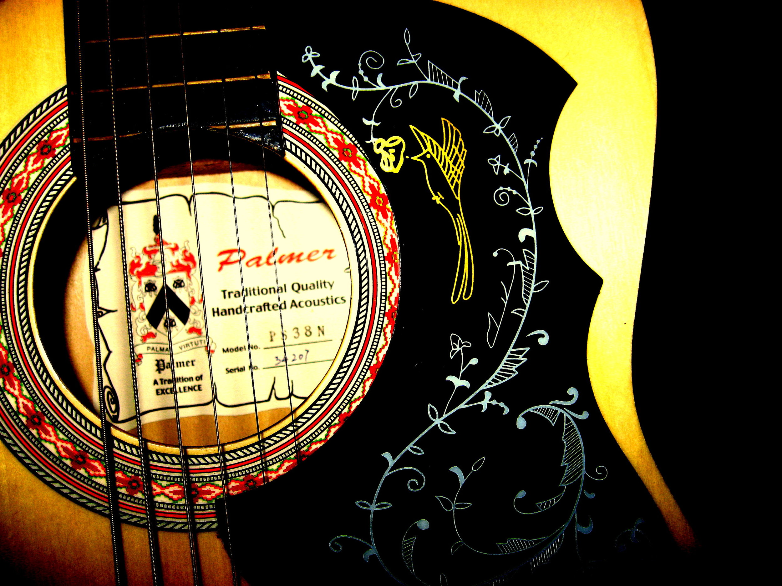 Palmer PS38  N 3/4 size Folk Guitar close-up  by  amberrgerr ,  Creative Commons   Attribution 3.0 Unported