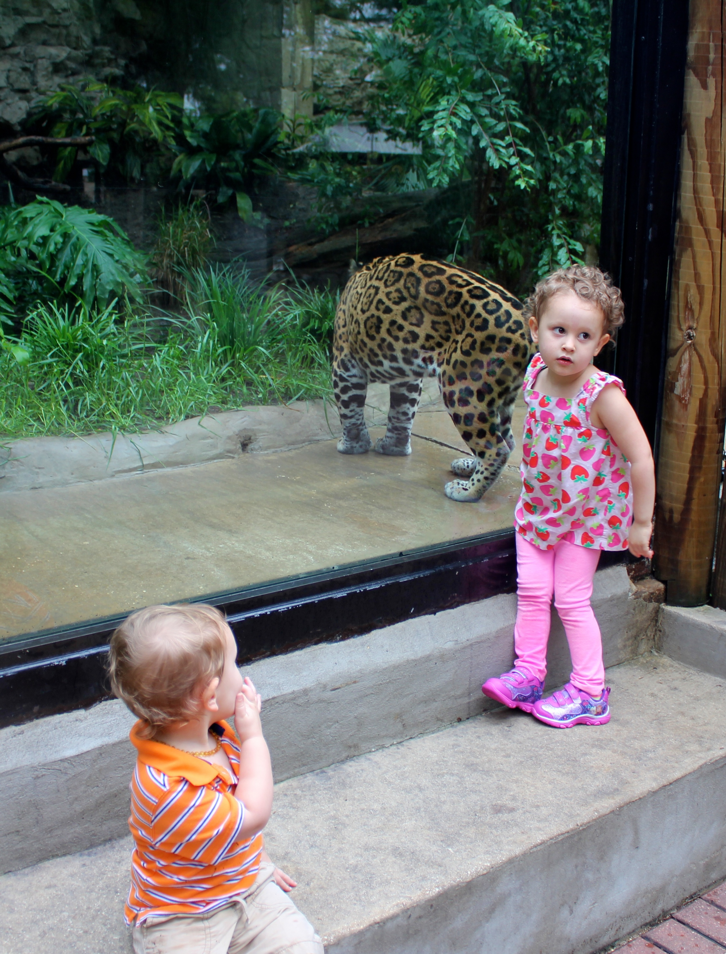 Judah & Kenzie with the jaguar - up close and personal.