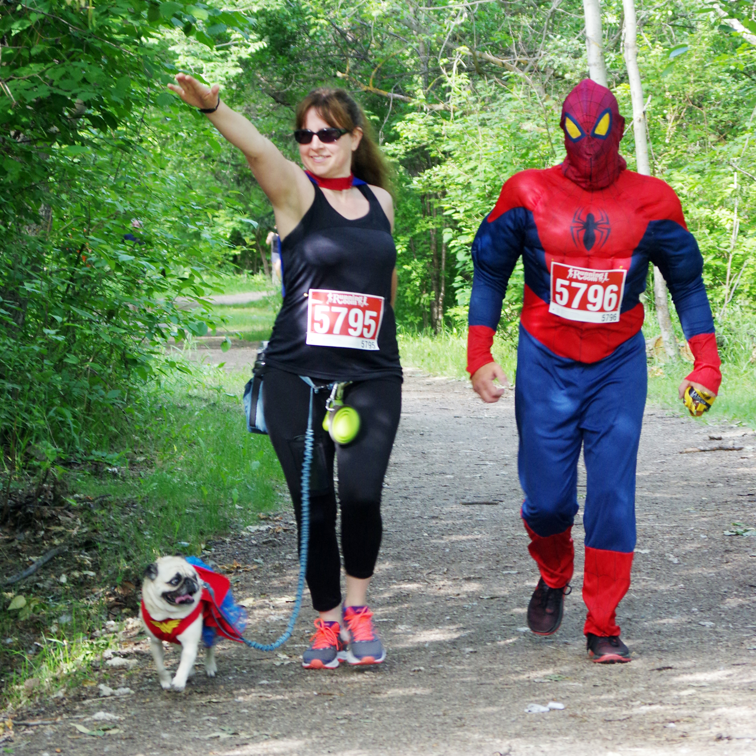 web-ADJ - Spidey and Pug - IMG1889.jpg