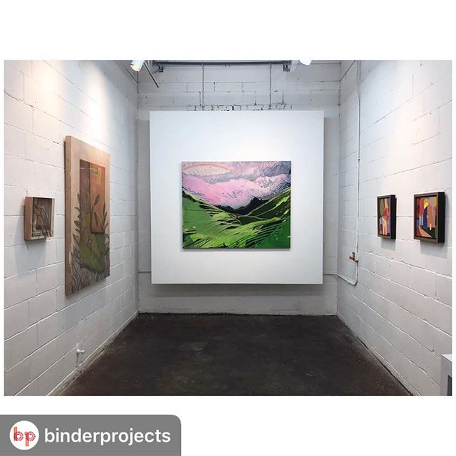 #Repost @binderprojects with @download_repost ・・・ The work for Inside/Out has been installed at 74 Flicker. Come out Friday night, see some beautiful work and say hello! The opening is May 10th from 5-8pm. All works can be viewed on our website by clicking the link in our bio. . . #binderprojects #exhibition #artopening #painting #drawing #memphisart #contemporaryart #contemporarypainting #sculpture