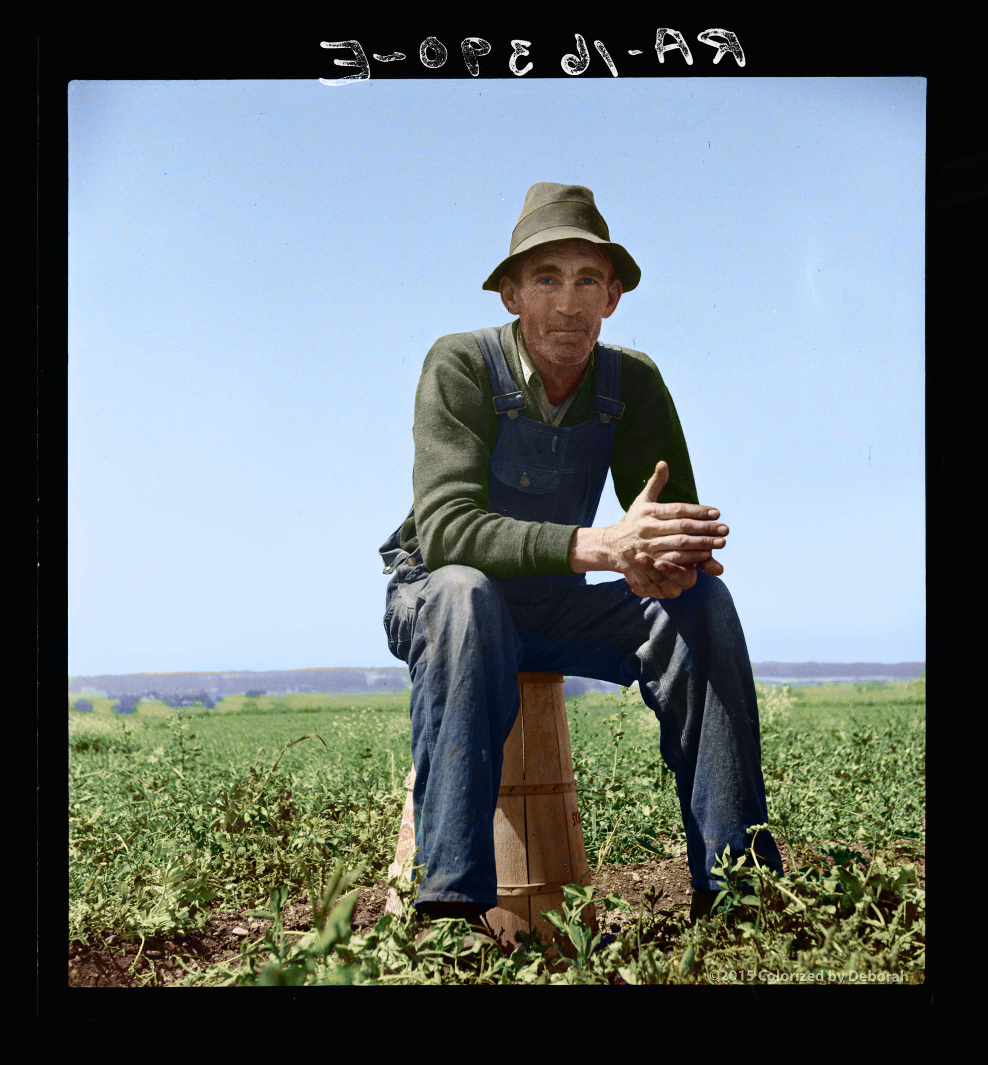 Strawberry Grower, California, Spring 1937