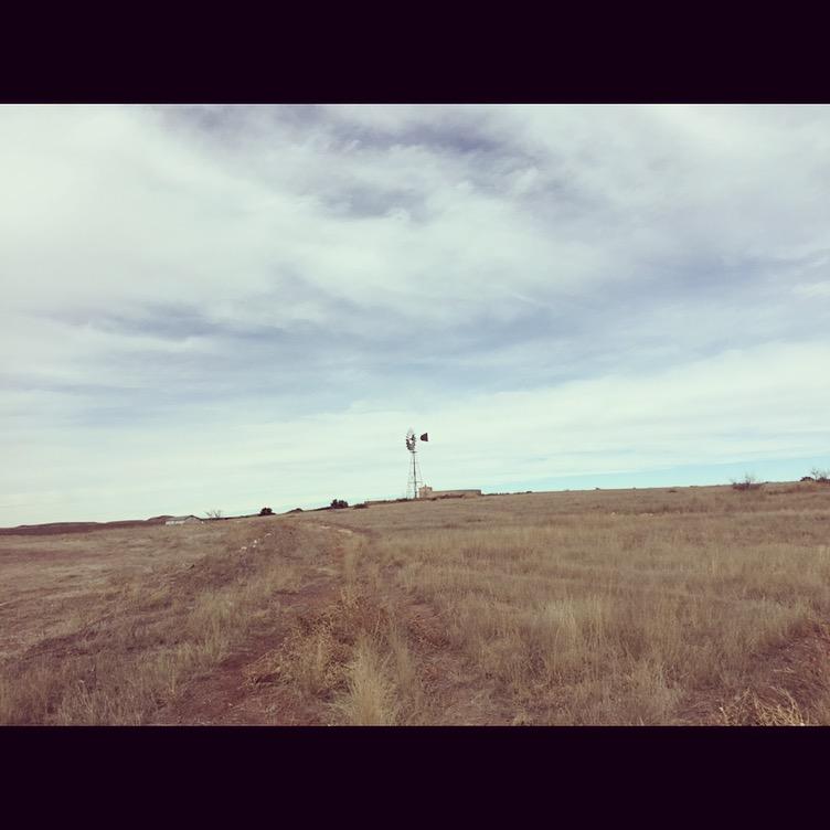 The desert of Marfa, TX.