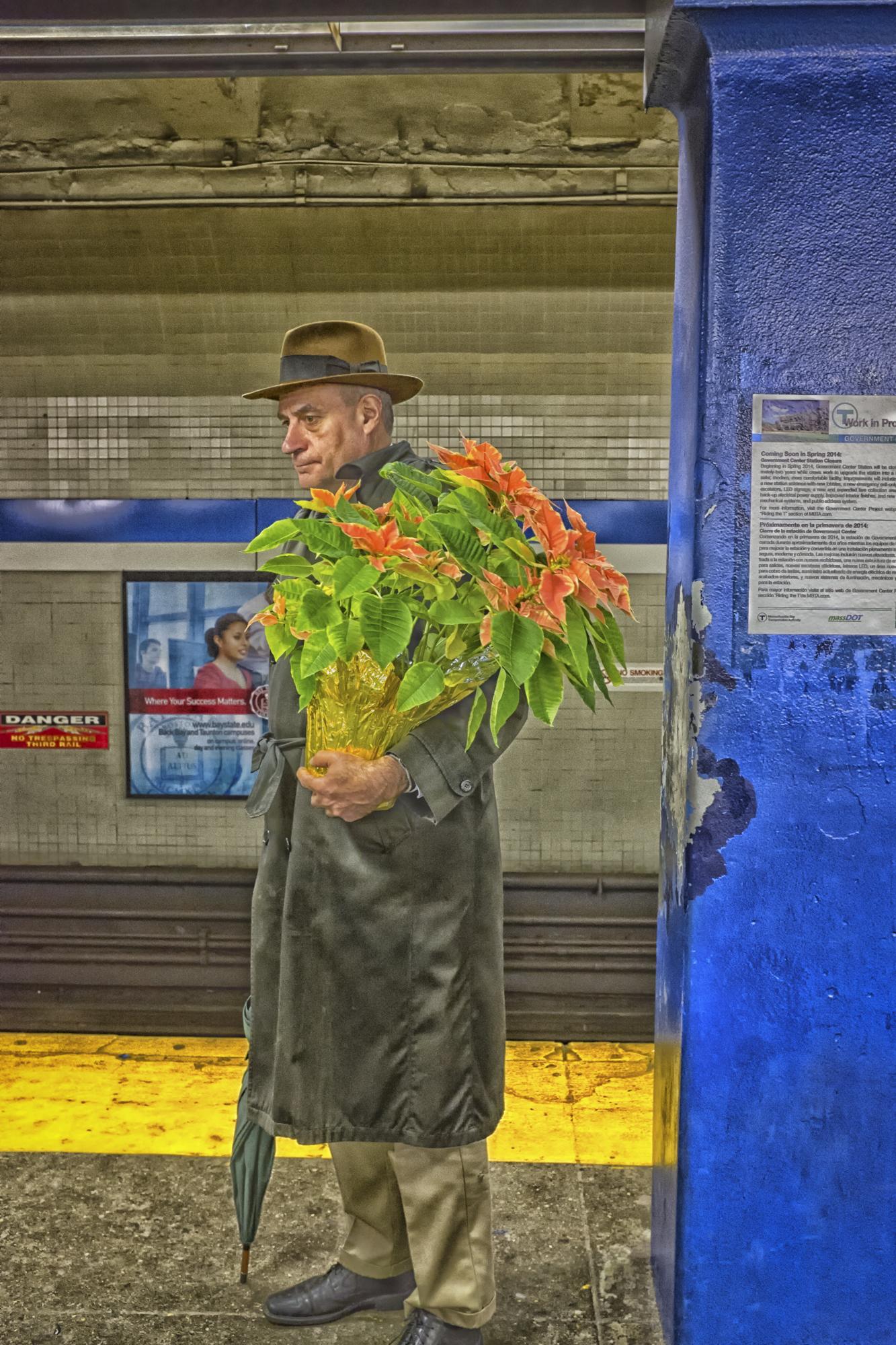 Blue Line Poinsettia, Government Center Subway, Boston, MA