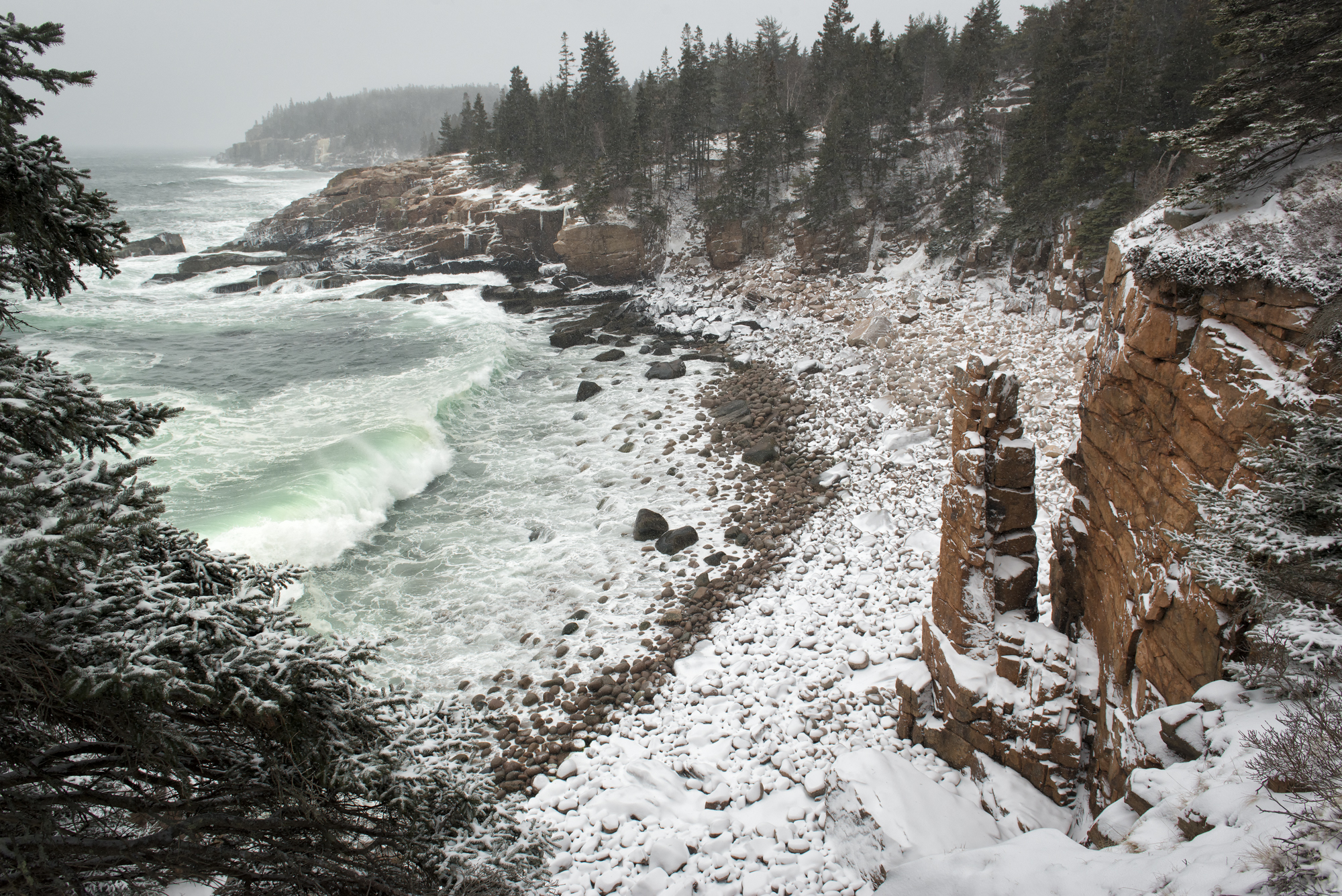 Blizzard at Monument Cove, Acadia National Park, Maine