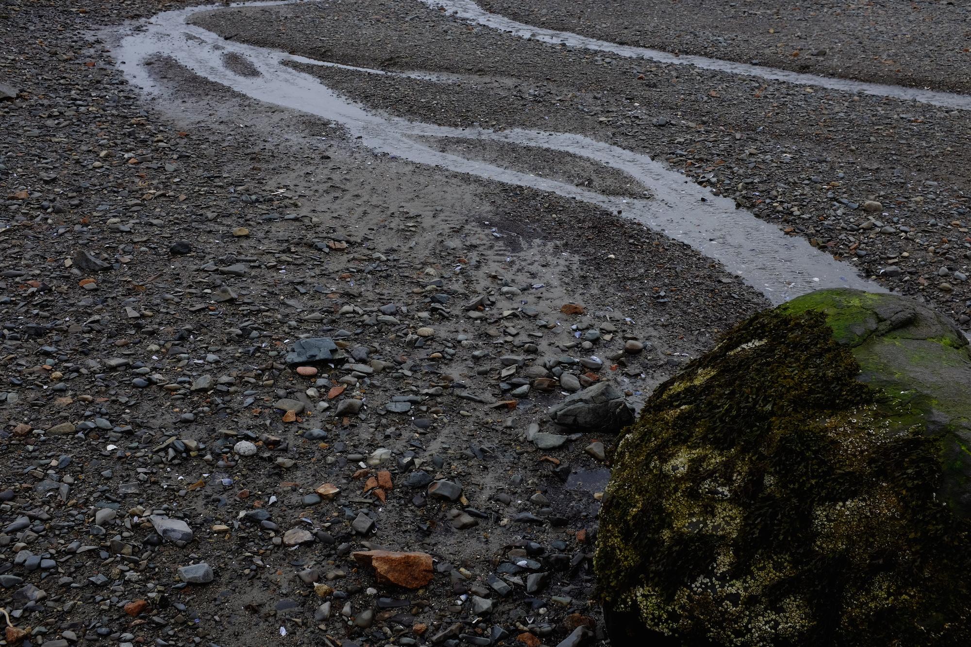 Hulls Cove Beach, Composition 2