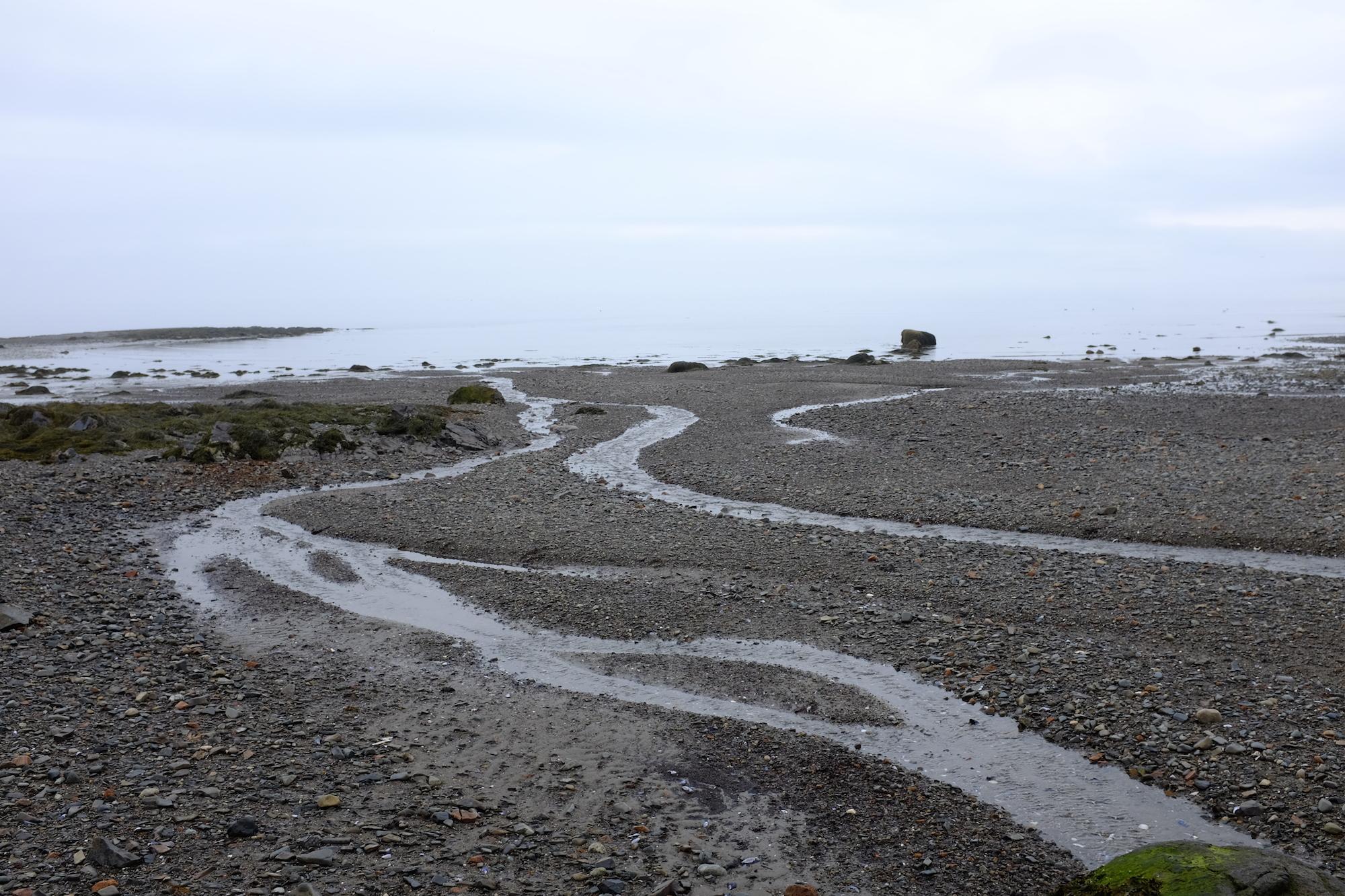 Hulls Cove Beach, Composition 3