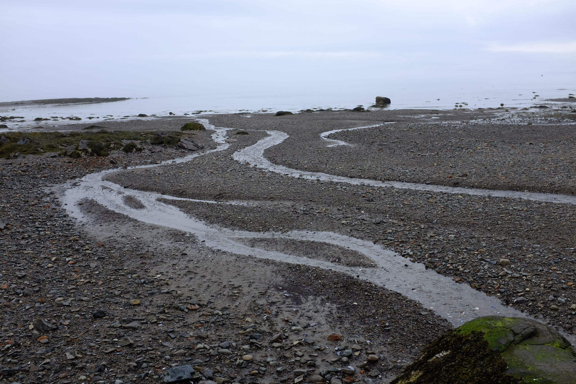 Hulls Cove Beach, Composition 4
