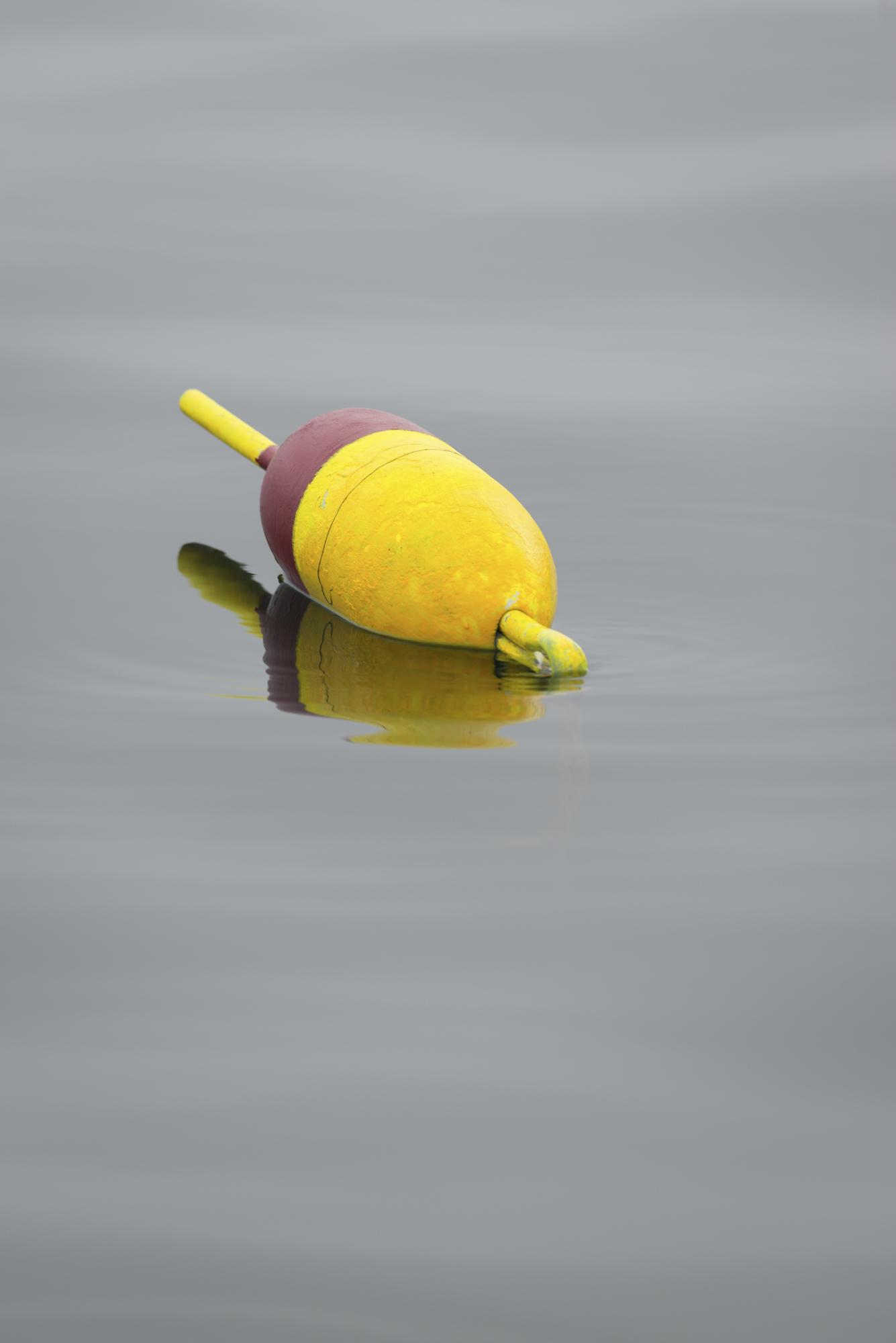 Quiet lobster buoy off the coast of Mount Desert Island, Maine