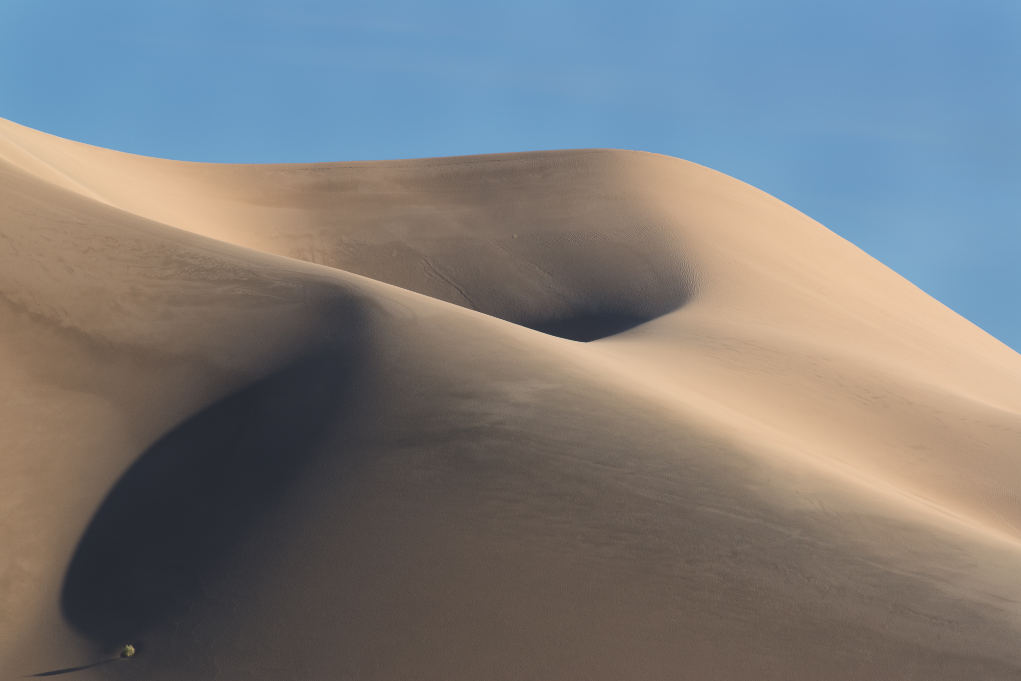 Ibex Dunes, Death Valley National Park, California