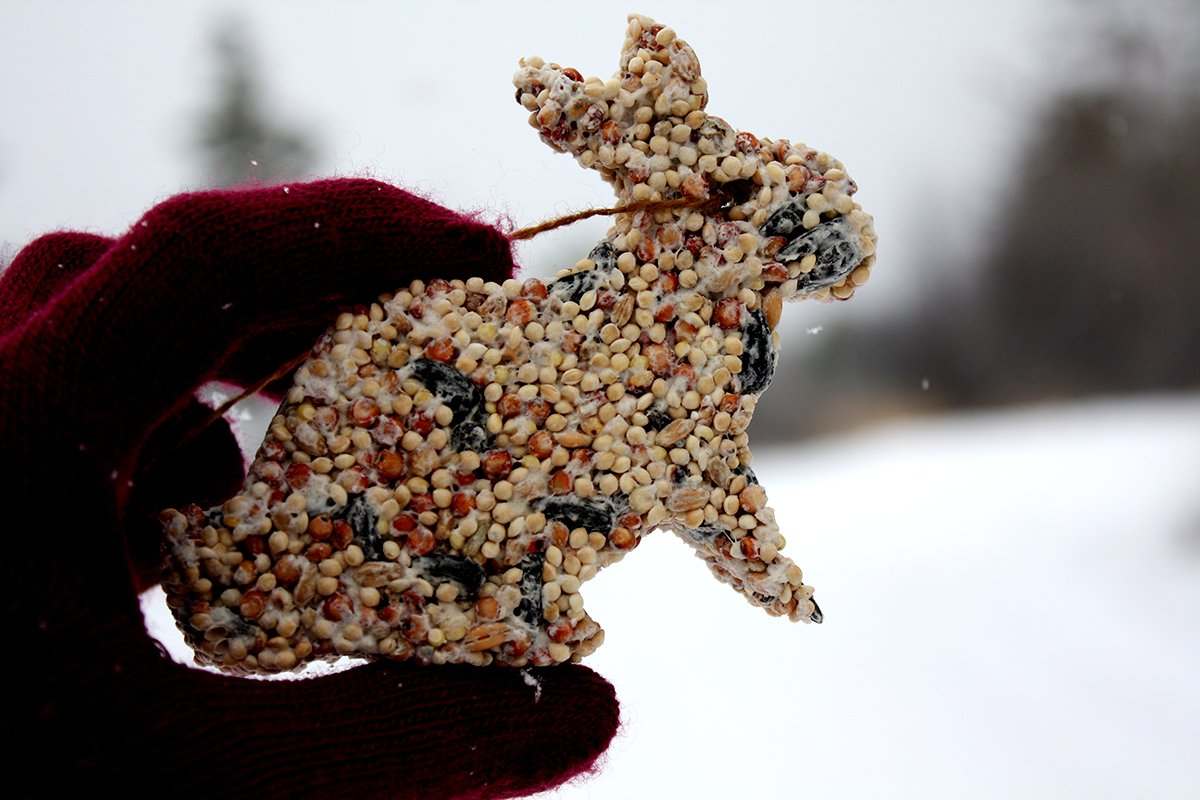Rabbit Bird Seed Ornament