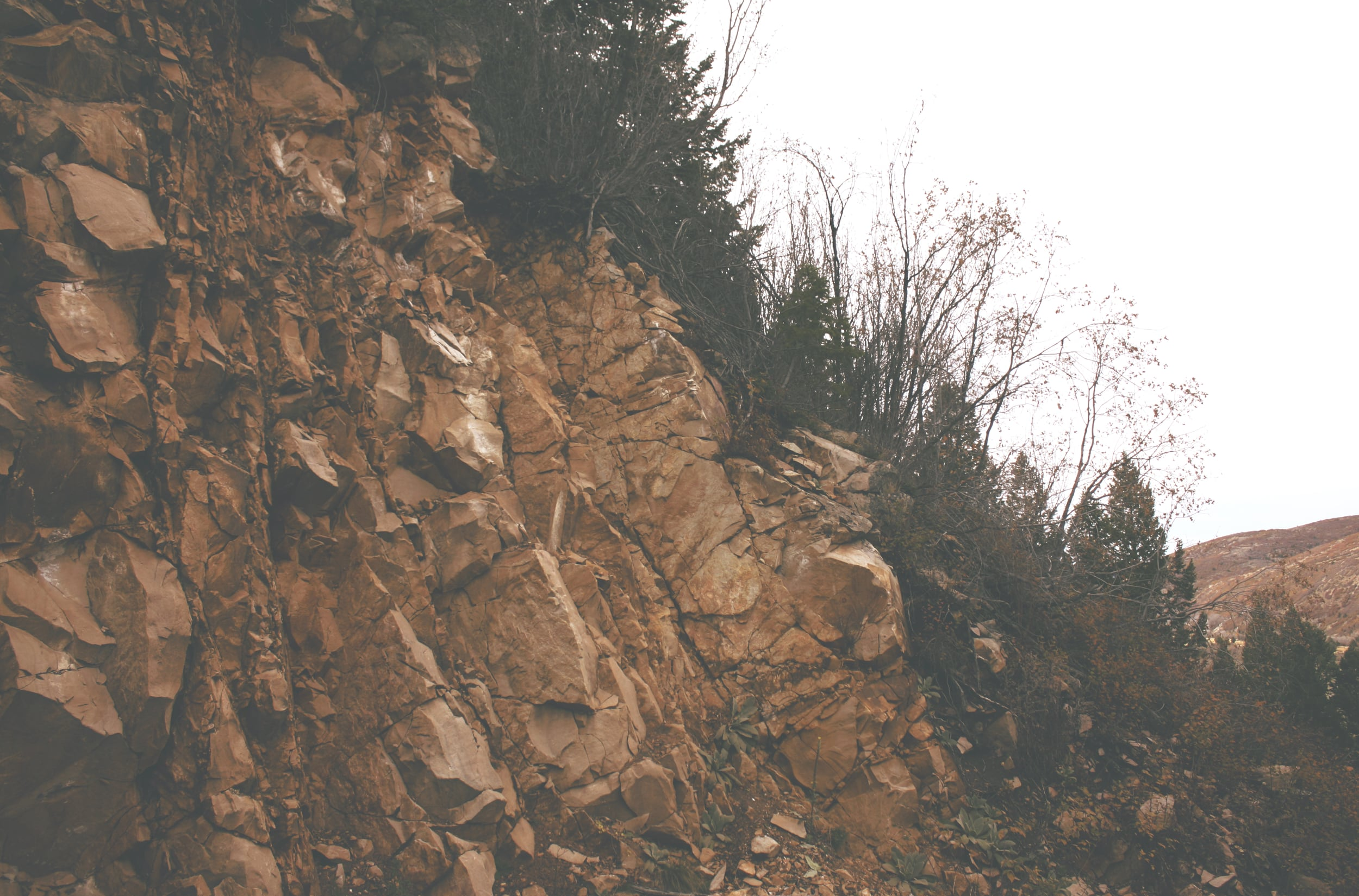 The Rock Wall