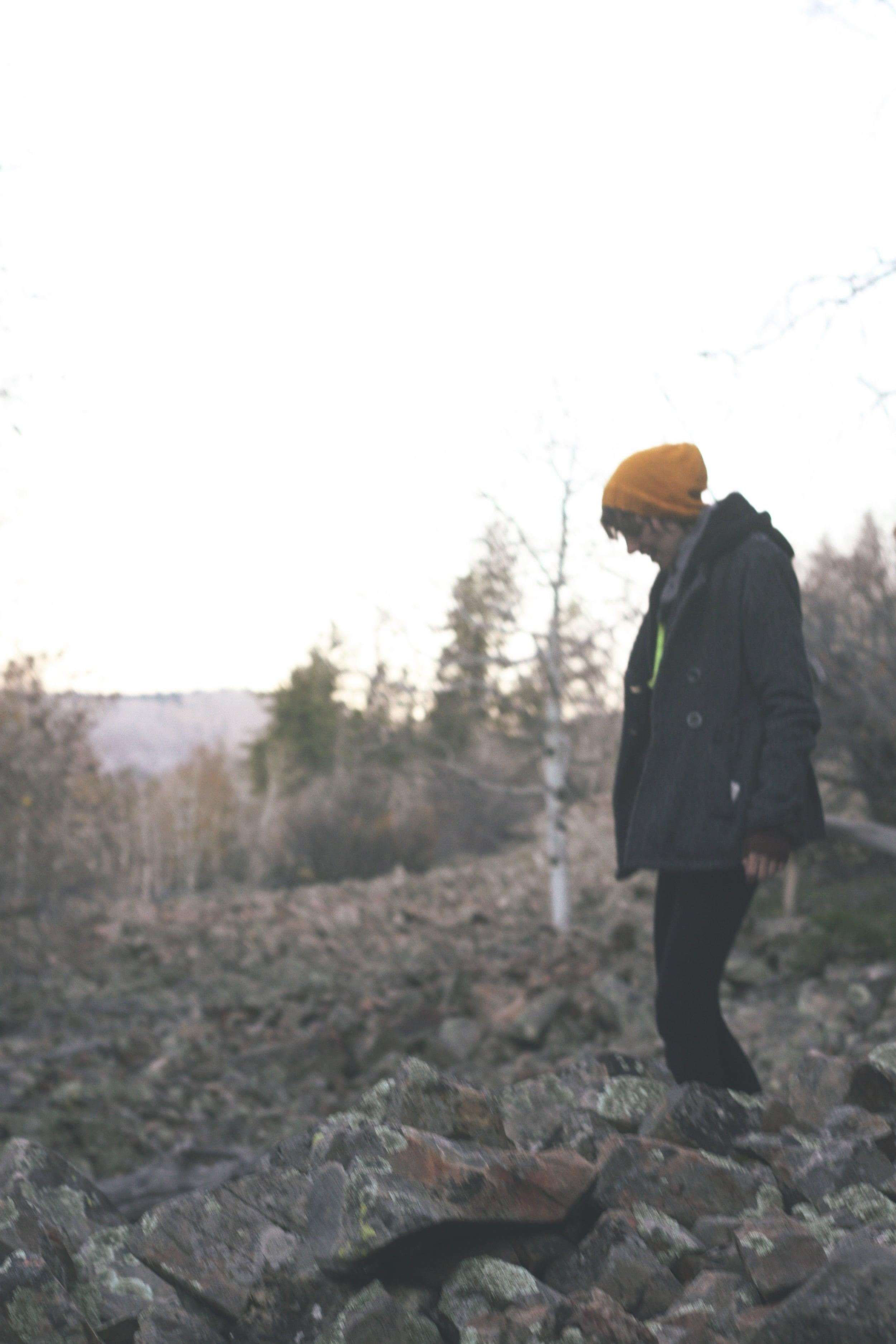 Wandering The Wild | Tree Talker