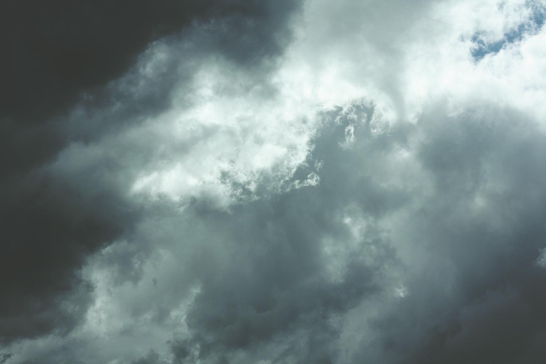 Cloudy Skies | Tree Talker Art