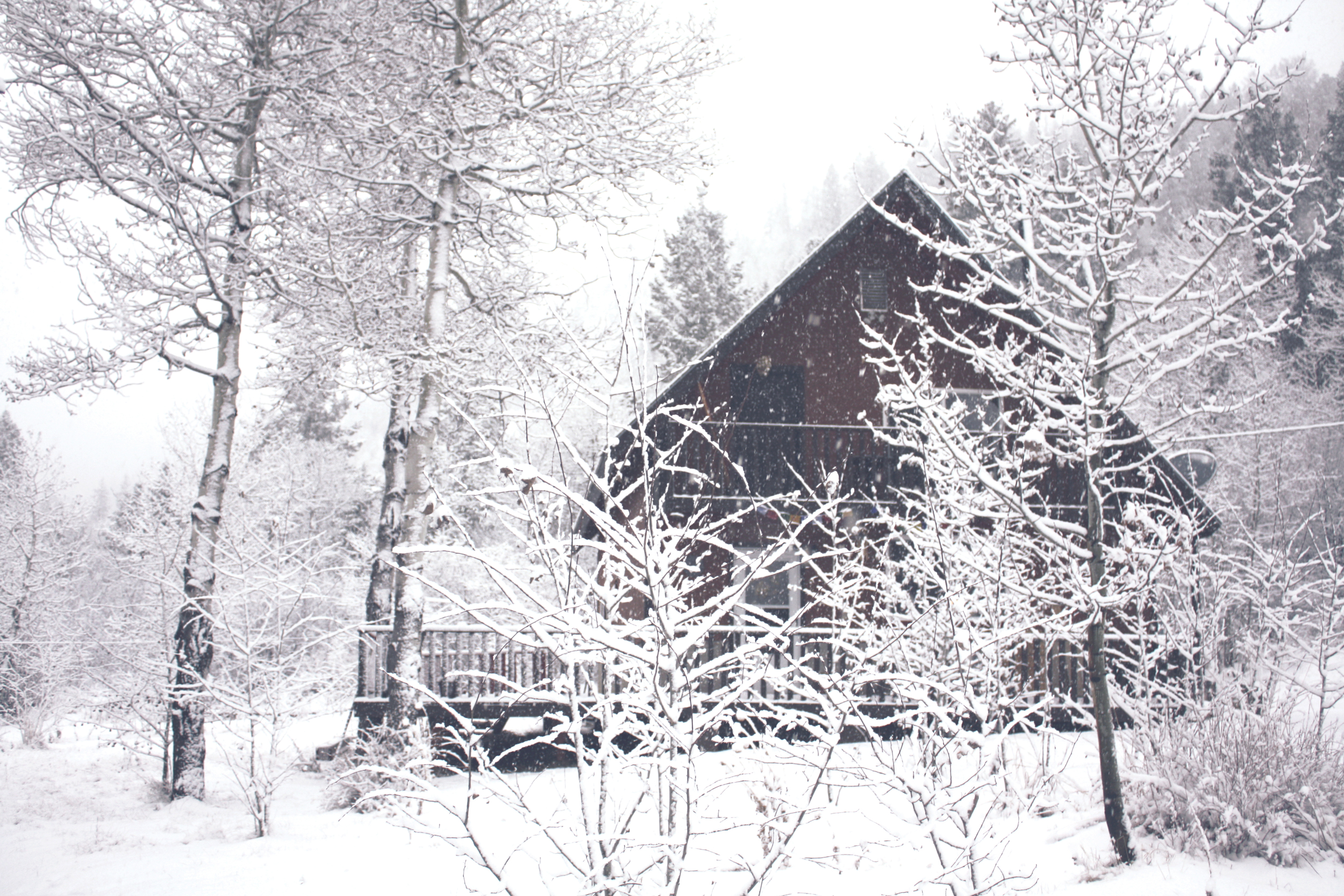 Winter at the Cabin