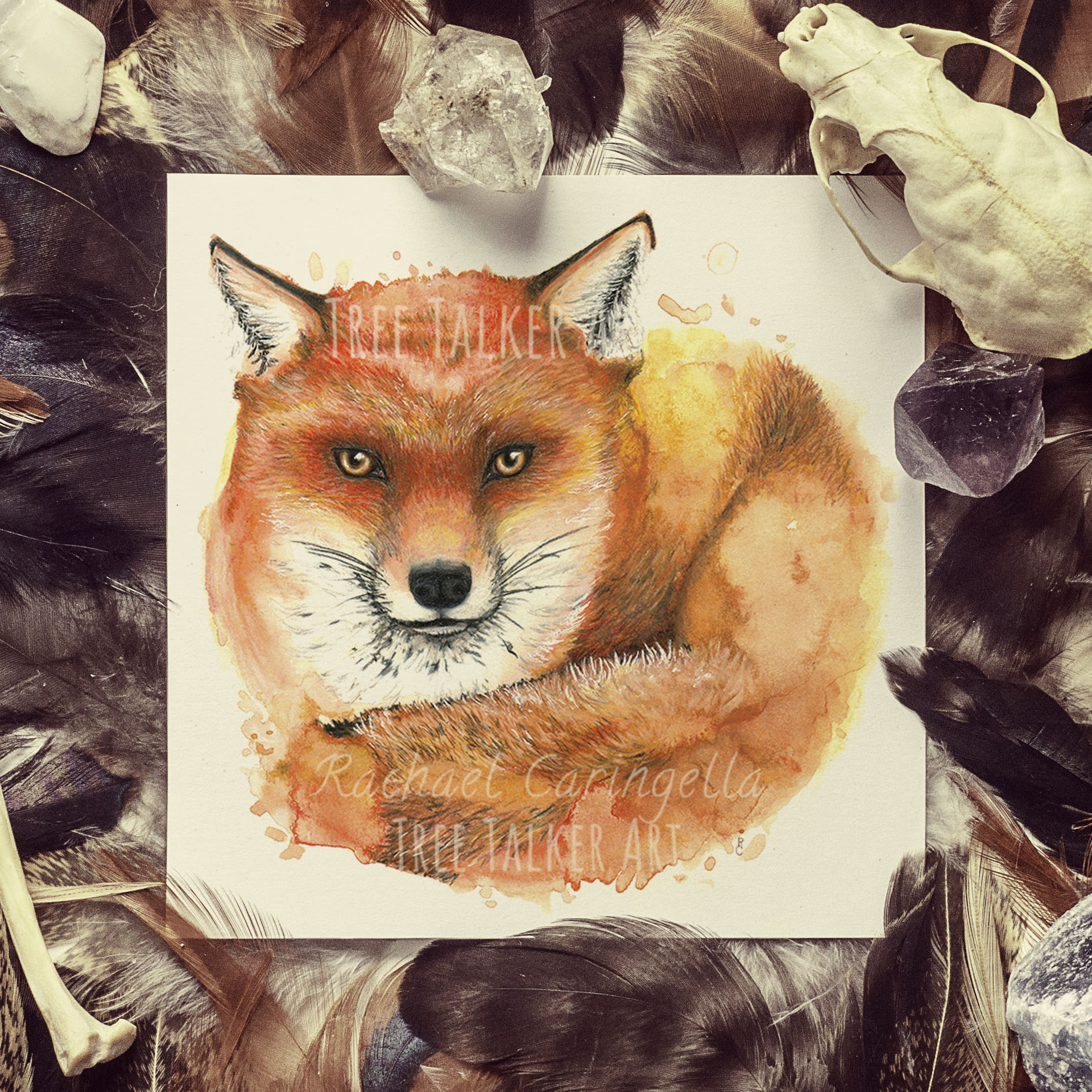 Fox Watercolor Mixed Media Painting   By Rachael Caringella   Tree Talker Art
