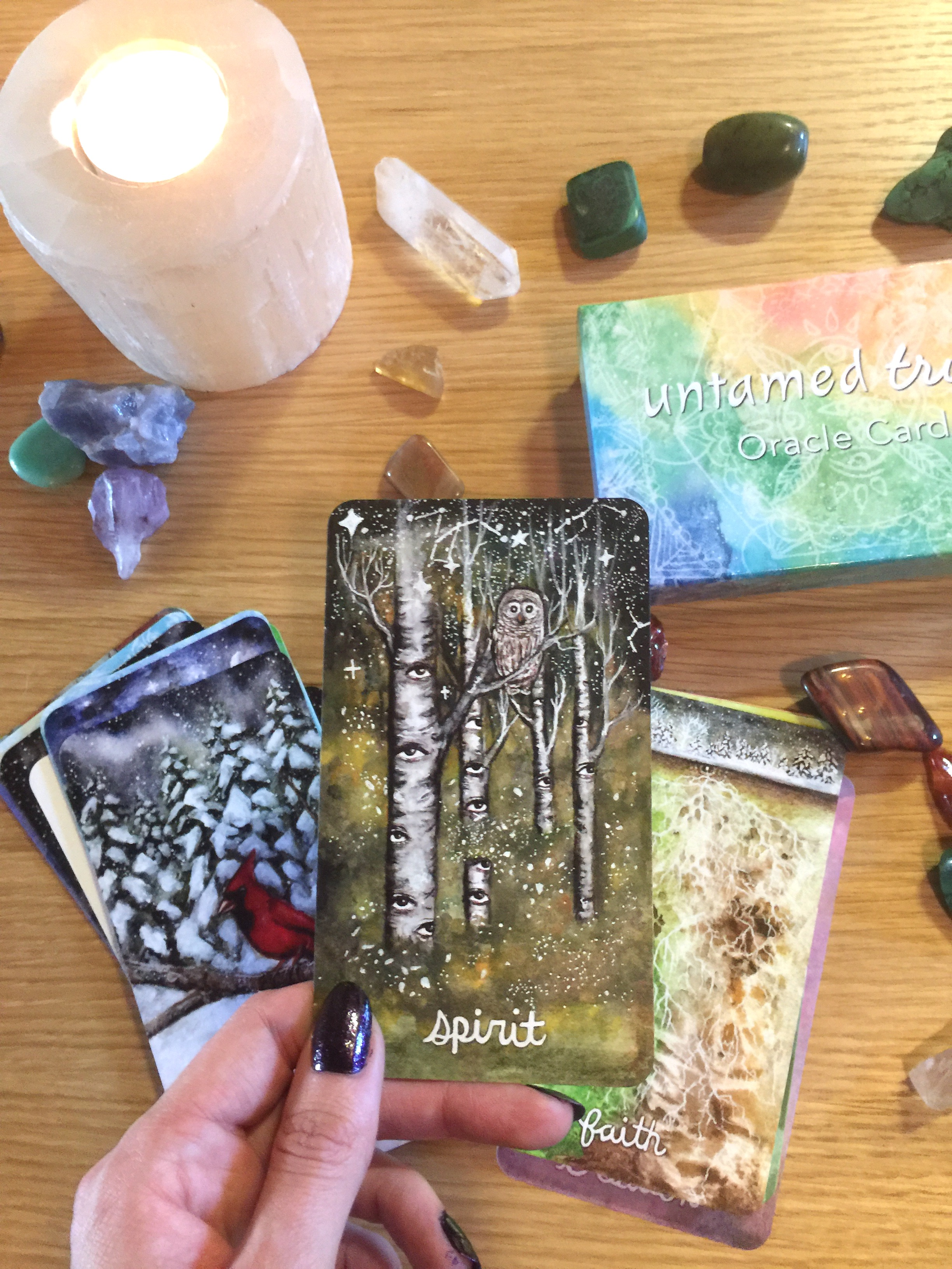 Untamed Truth Oracle