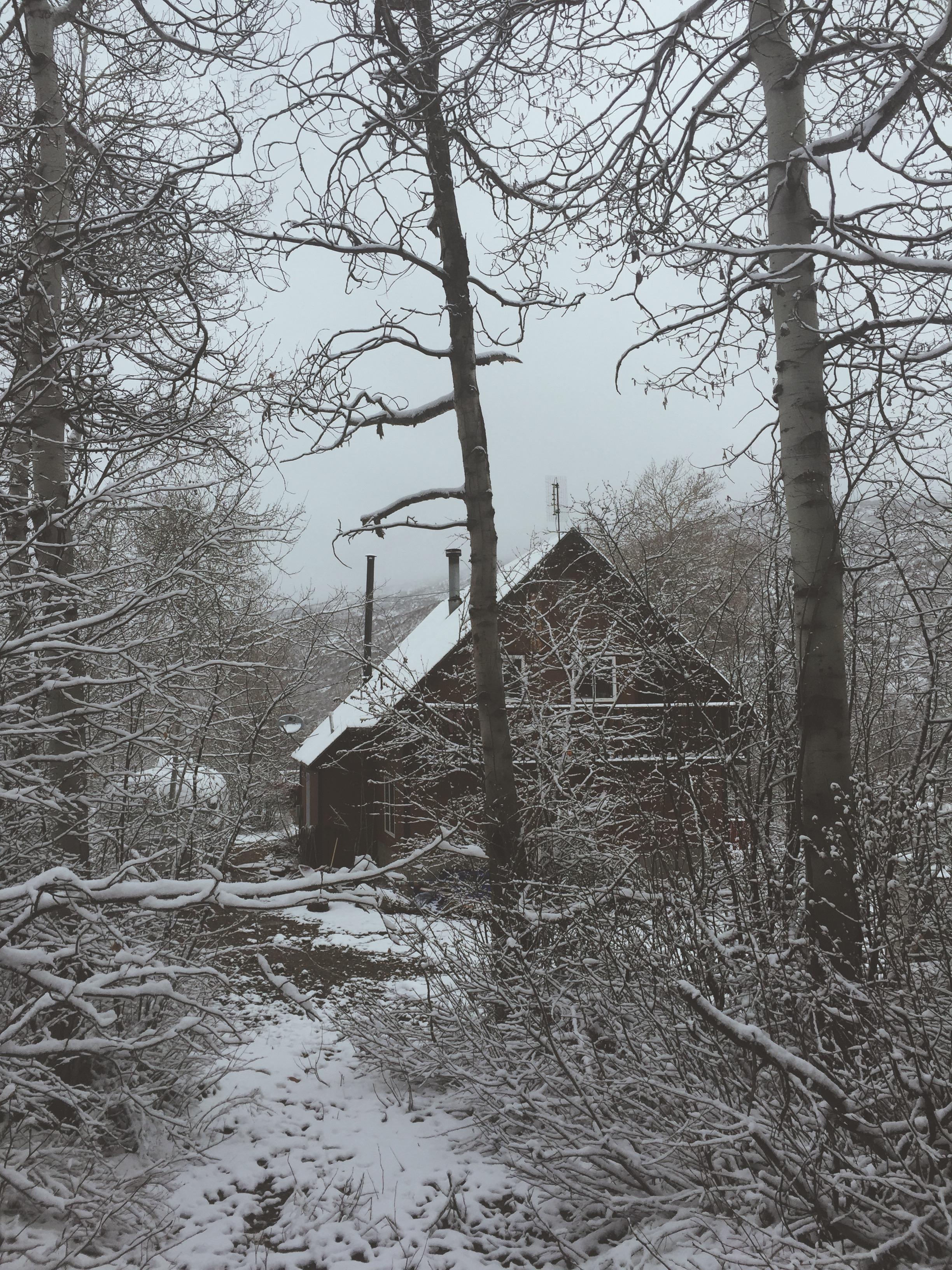 Wintery Cabin | Cabin Life | Tree Talker Art