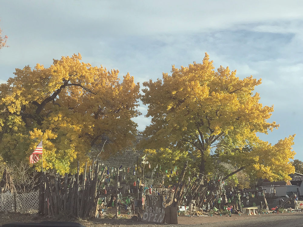 Tree Talker Art Blog | In pursuit of the numinous  | Facing the winds of change | Santa Fe