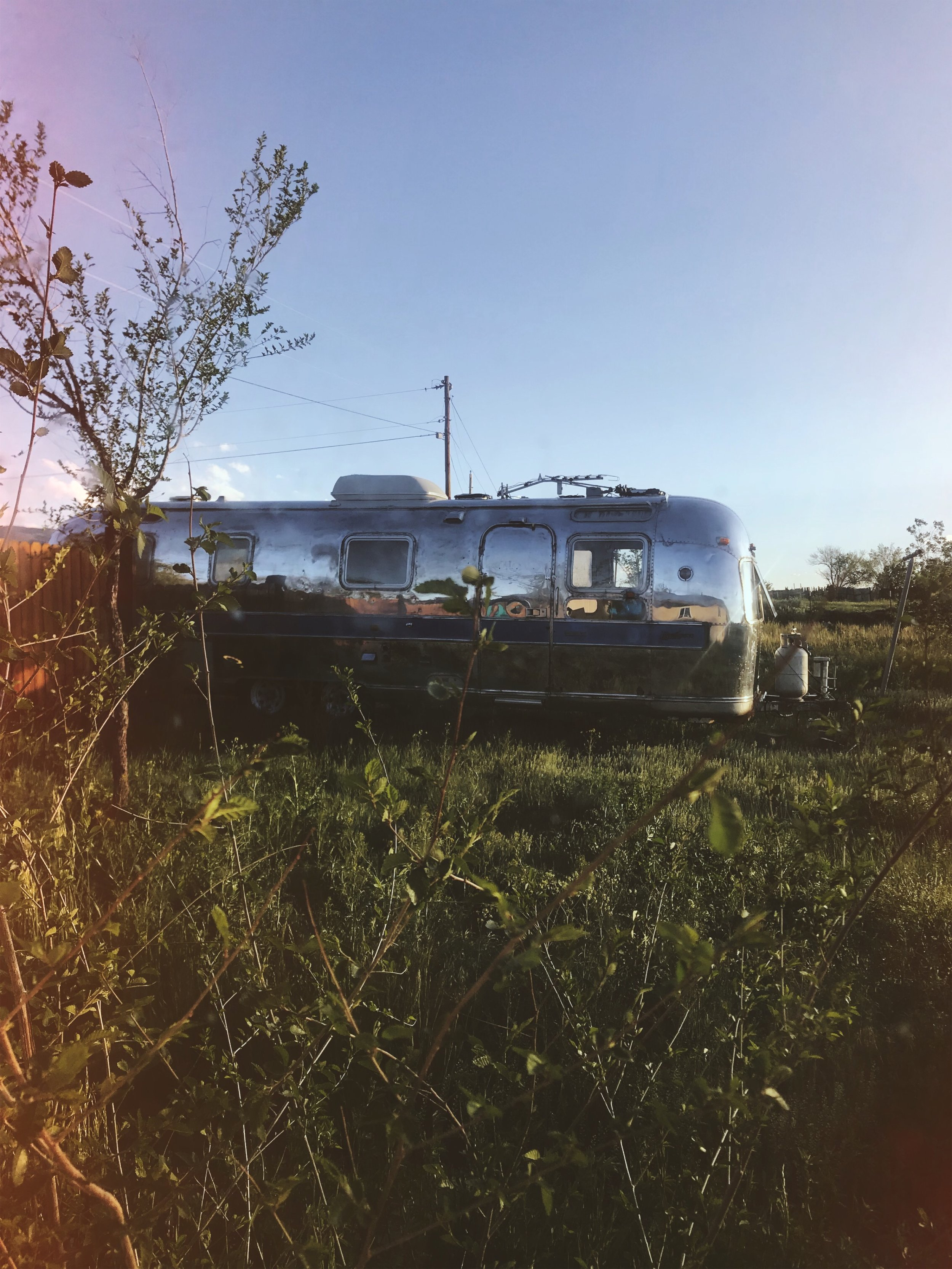 Dear Stella | Tree Talker Art | Airstream Rebuild