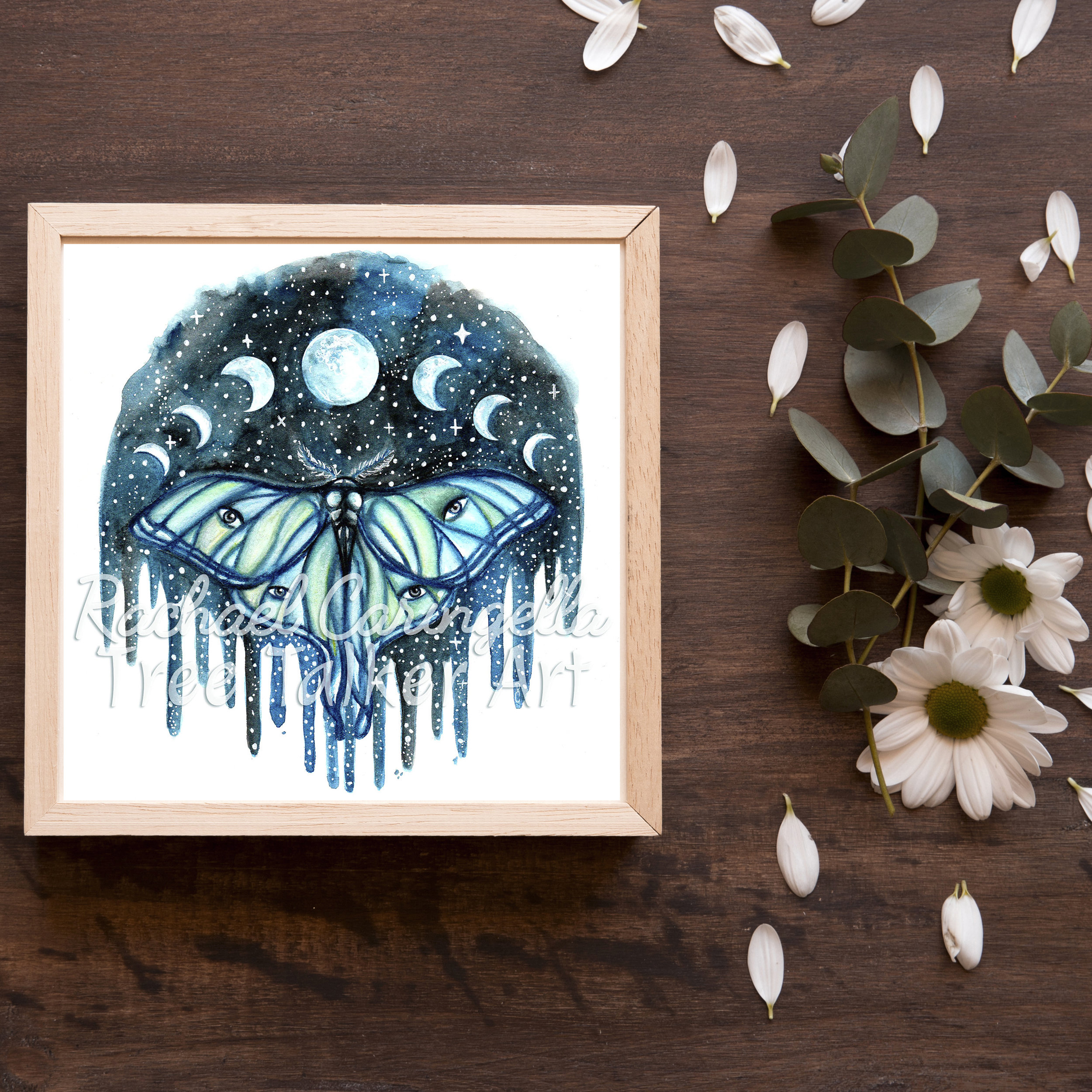 Tree Talker Art | Luna Moth | Moon Phase Art Print