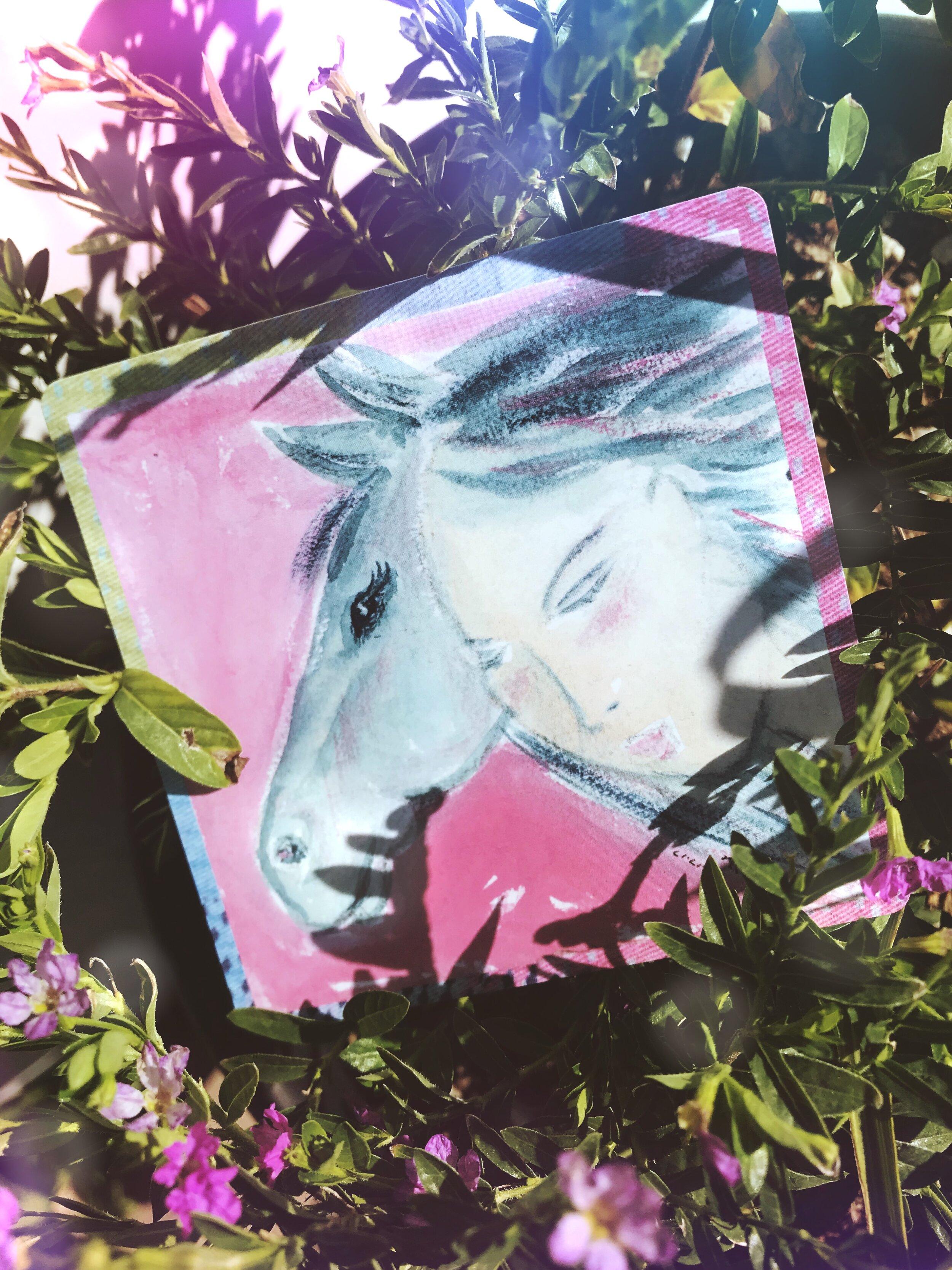 Tree Talker Art Elfin Ally Oracle Deck Review
