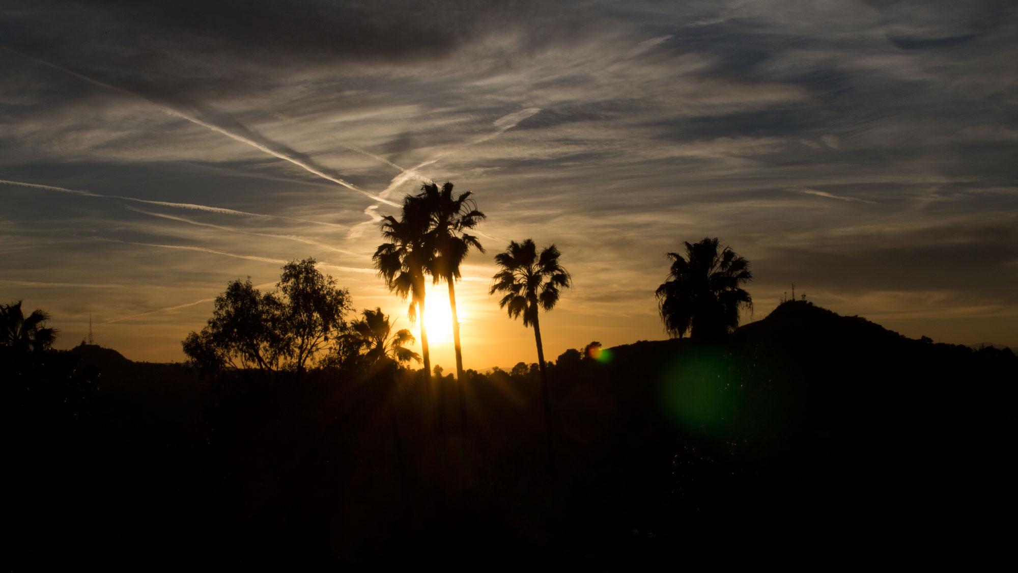 Runyon Canyon, Los Angeles | United States