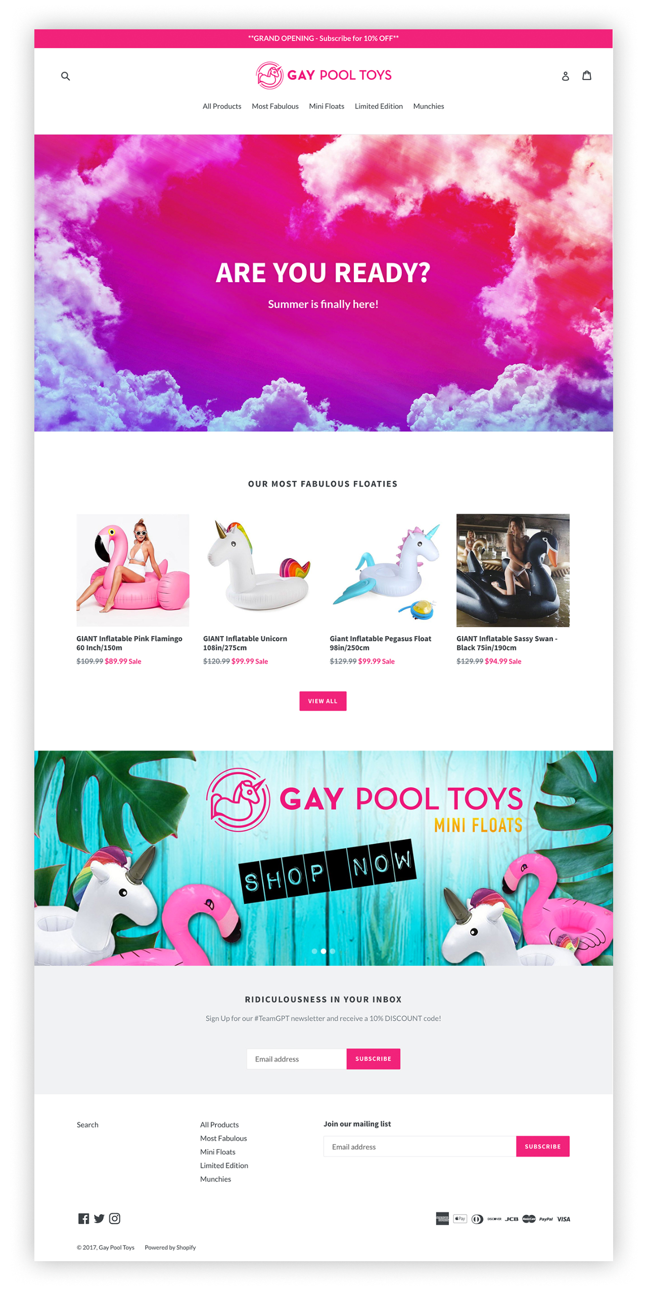 Gay-Pool-Toys-Home.png