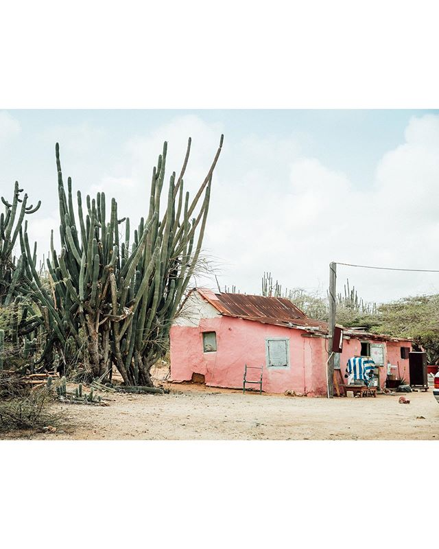 A few months ago, I had the unique opportunity to spend a day on the island of Aruba. To my surprise, what I had previously envisioned to be a lush, tropical destination, was comprised largely of an arid, desert landscape with rugged terrain and rocky beaches. I found out that there was a place on the island that rented dirt bikes, and, after handing over a small amount of cash & signing a slightly suspect waiver, they sent me on my way (complete with a shitty, old skate helmet that was about two sizes too small). I had an awesome time ripping around, getting lost, & exploring the island.  However, one of the highlights of my day was when I pulled over to shoot some photos of a little, pink house along a quiet dirt road. While I was shooting, the family who lived in the house pulled up in a beat up, old car. Despite being met with some looks of heavy skepticism, I smiled and waved. I was relieved to hear them speaking Spanish, and I asked if I could shoot some photos of their beautiful home. After getting permission from the sweet, old abuelita who had been resting inside the house, the family suddenly became quite welcoming and took me on a tour of their property. They introduced me to their two pet goats and showed me all of the unique possessions strewn about their yard…they couldn't have been sweeter. Upon my departure, all three generations of that family (yes, all living in that tiny house) came outside to wish me farewell and recommend other homes in the area that I might want to check out.  Hope I don't sound too cheeseball here, but, while our interaction was relatively brief, it was pretty incredible to connect with people from an entirely different walk of life. This kinda stuff might not be for everyone, but it was one of the more fulfilling experiences I've ever had…looking forward to many more. 🤙🏼 ✨ #beachboystotallymademethinkitwasatropicalisland