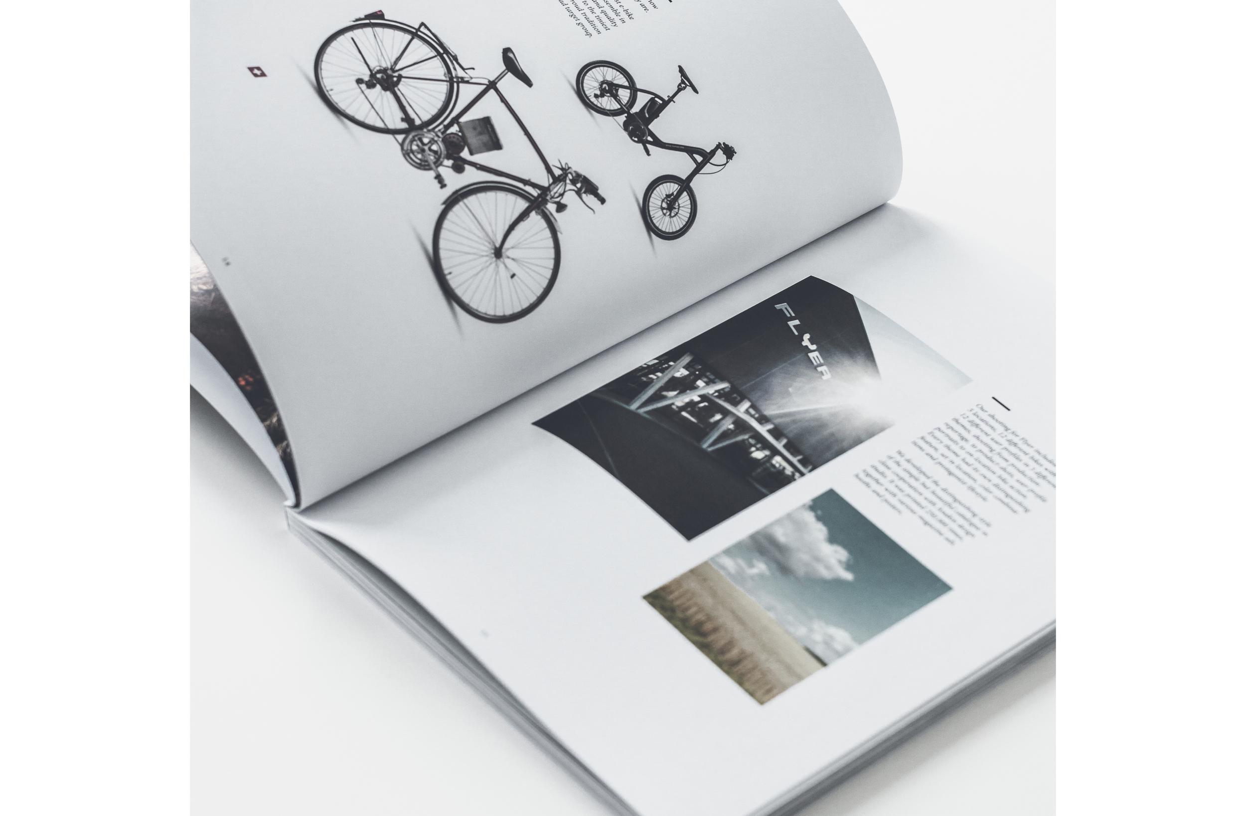 book_case10.jpg