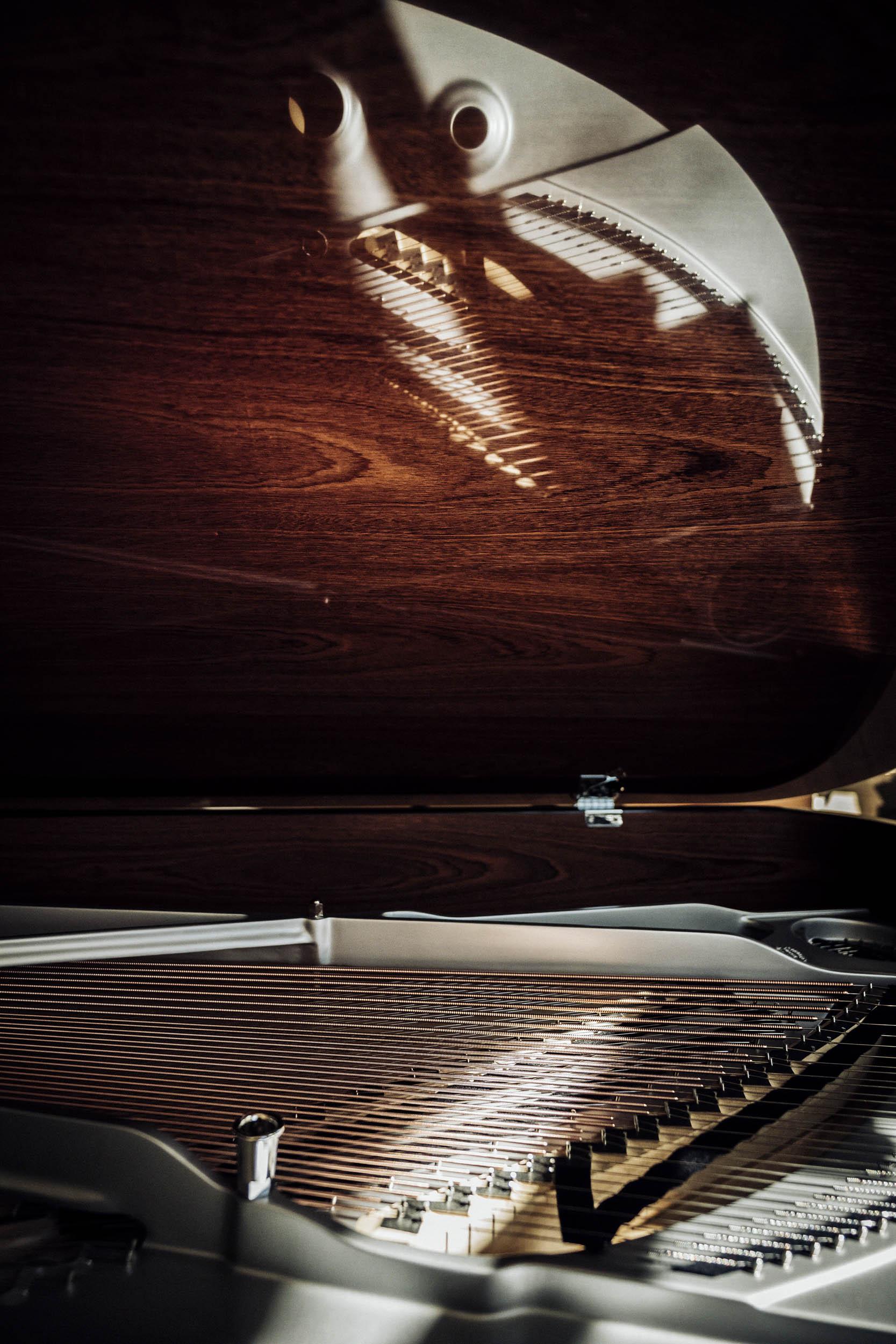 2019-SeifertUebler-steinway-piano-015.jpg