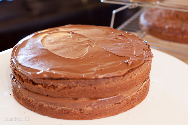 Choc Nutella Cake-0062.jpg